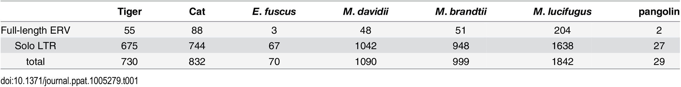Copy number of MLERV1 related proviruses in different species.