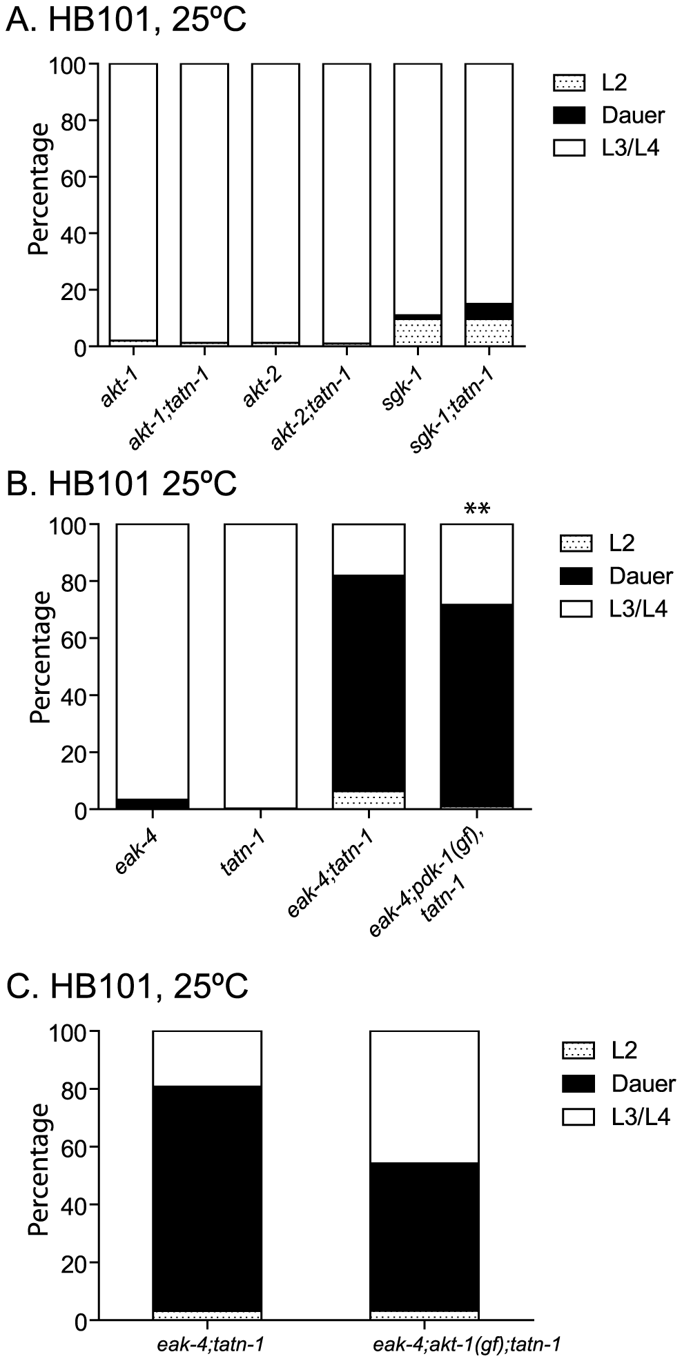 <i>tatn-1</i> effects on development do not require changes in PI3 kinase signaling.