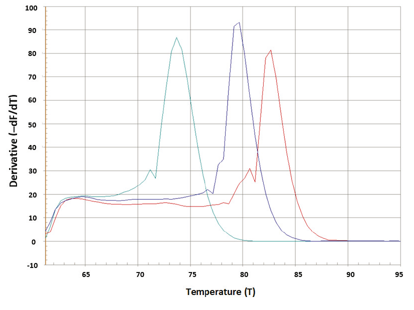 Fig. 1: Representative melting curve (A) and derivative of fluorescence with respect to the temperature (dF/dT).