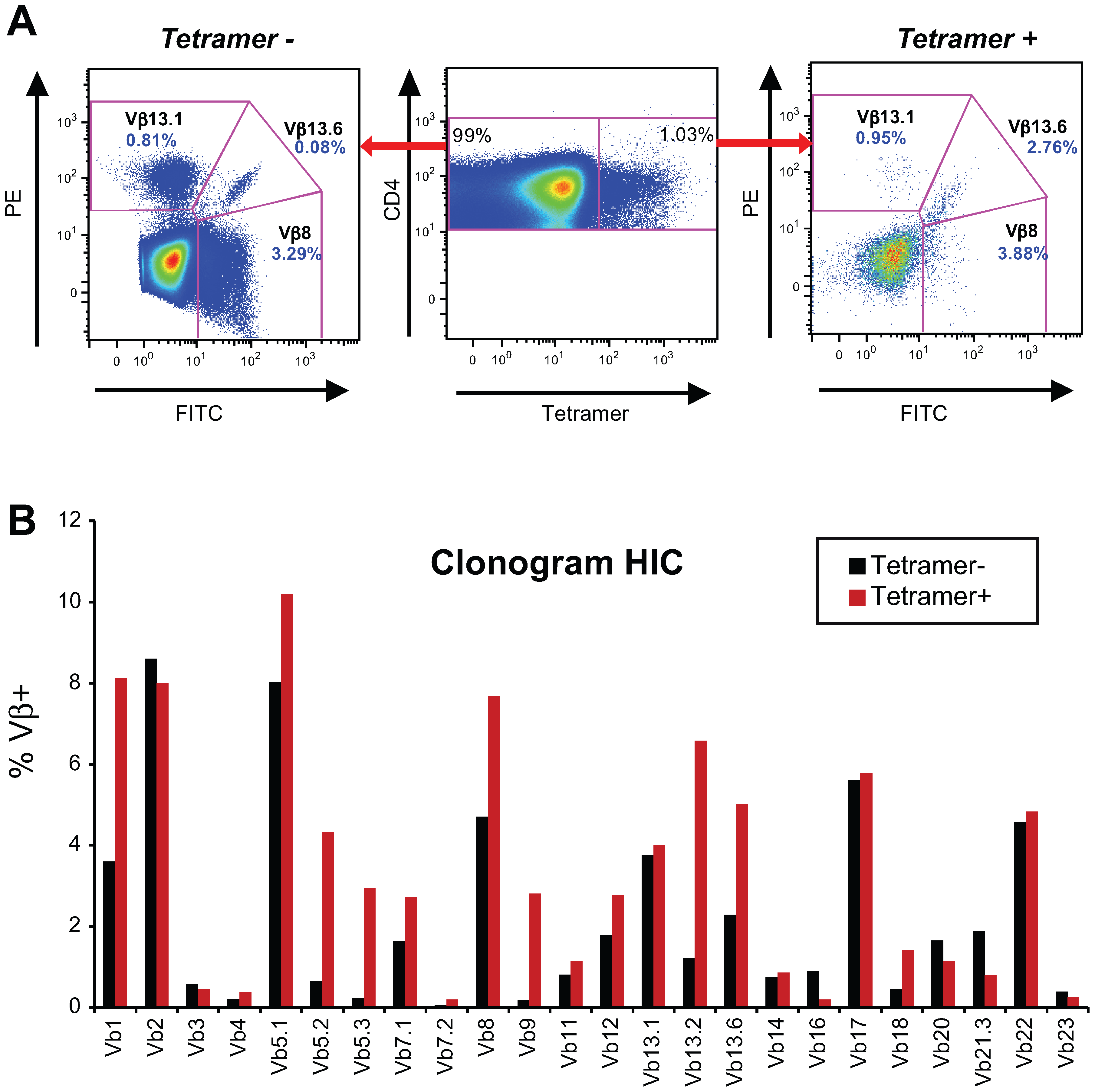 Gag293-specific CD4+ T cells have a diverse Vβ repertoire.