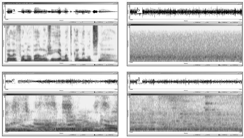 Graf 2a, 2b, 2c, 2d. Spektrogramy signálů: a) věta namluvená profesionálním řečníkem, b) řečový šum - konstantní neměnný charakter šumu, c) hovorový šum - časové i spektrální charakteristiky podobné řečovému signálu, d) cocktail party šum - svým časovým a spektrálním charakterem je mezistupněm mezi řečovým a hovorovým šumem.
