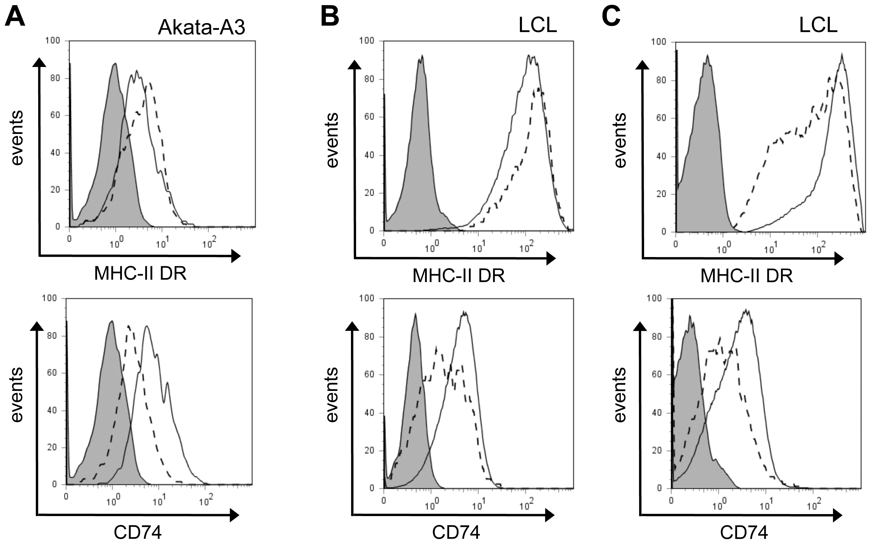 Downregulation of CD74, and not MHC-II DR, is a consistent effect of BZLF1.