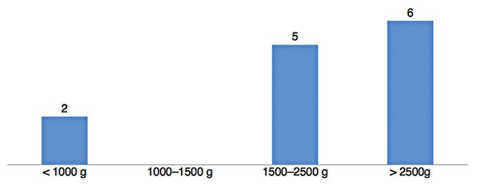 Porodní hmotnost zdravých plodů