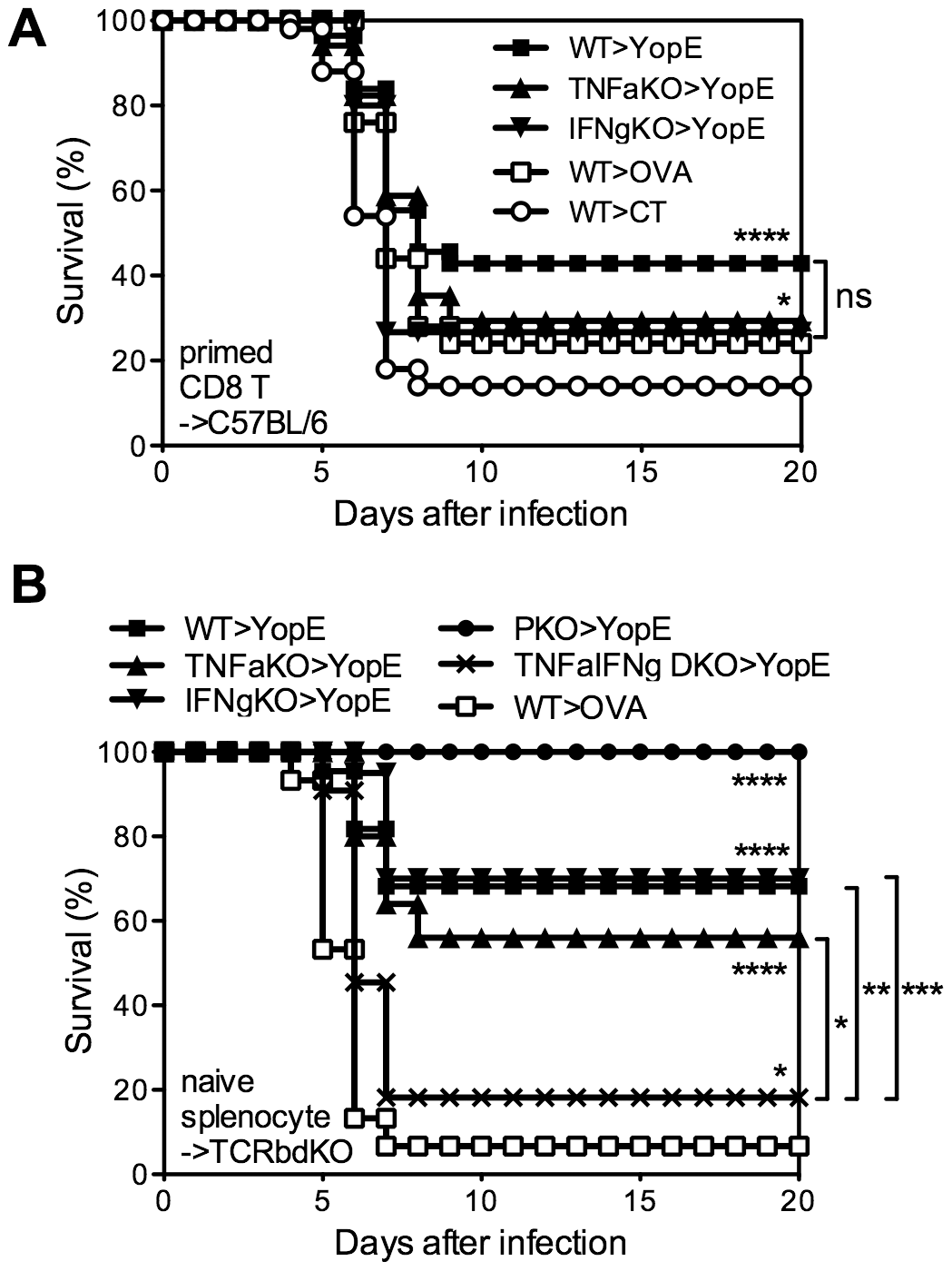 TNFα and IFNγ produced by YopE<sub>69–77</sub>-specific CD8 T cells have complementary roles during protection against <i>Y. pestis</i>.