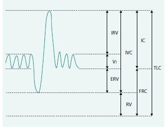 Plicní objemy a kapacity se znázorněním nepřímo měřitelných objemů.