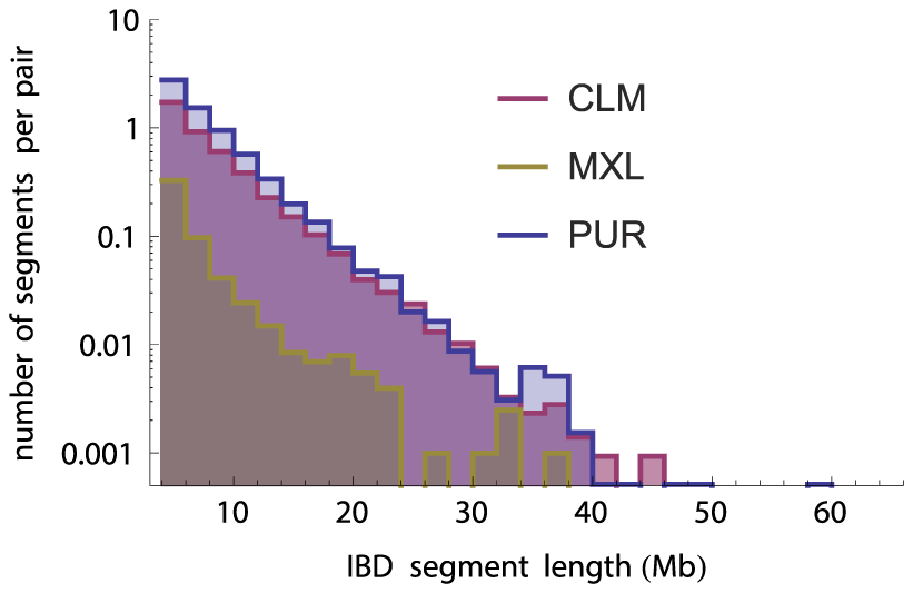 Number of IBD tracts by length bin in the three panel populations (independent of ancestry estimations), normalized by the number of individual pairs.