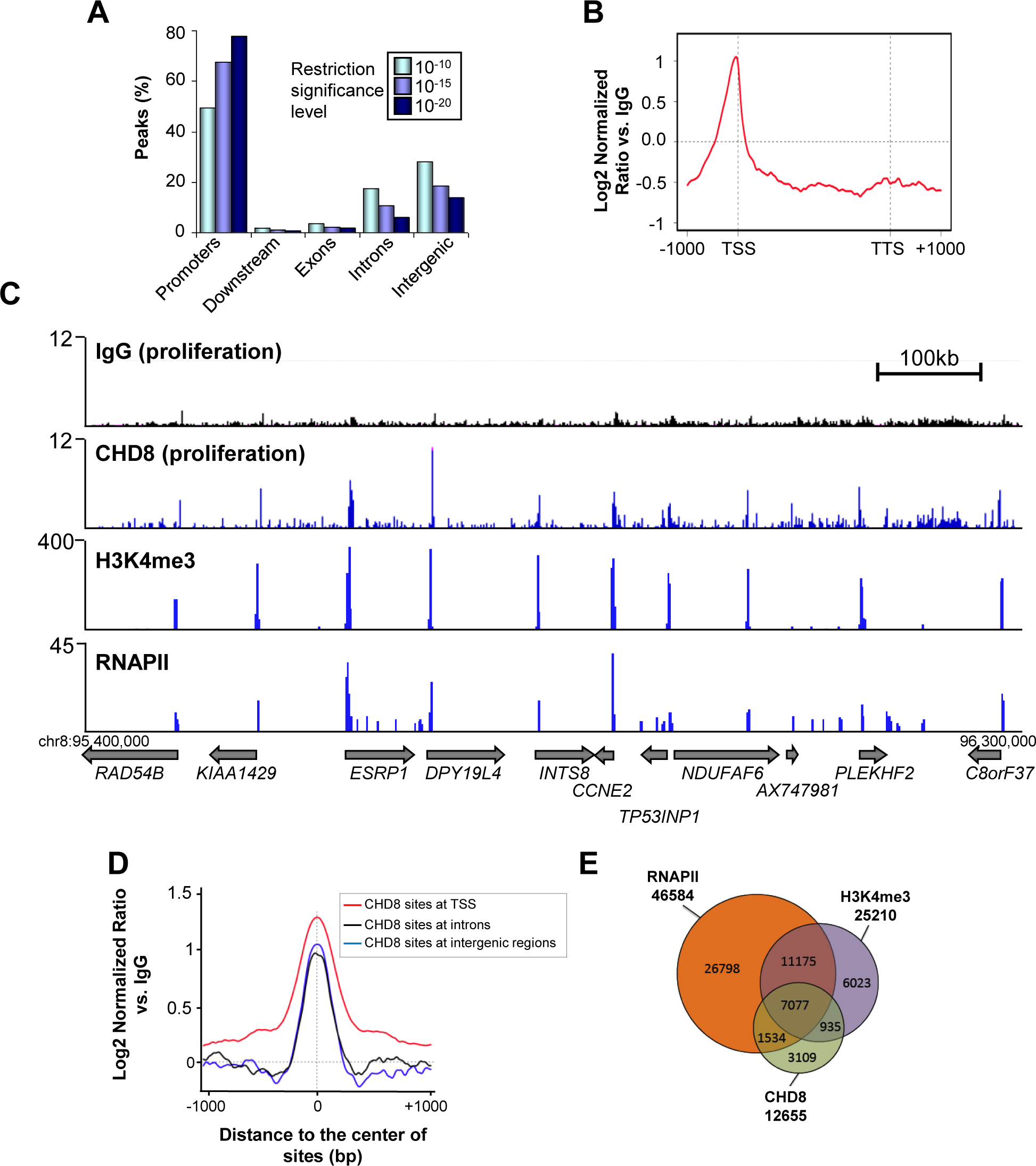 Genome-wide analysis of CHD8 binding sites under normal proliferation conditions.
