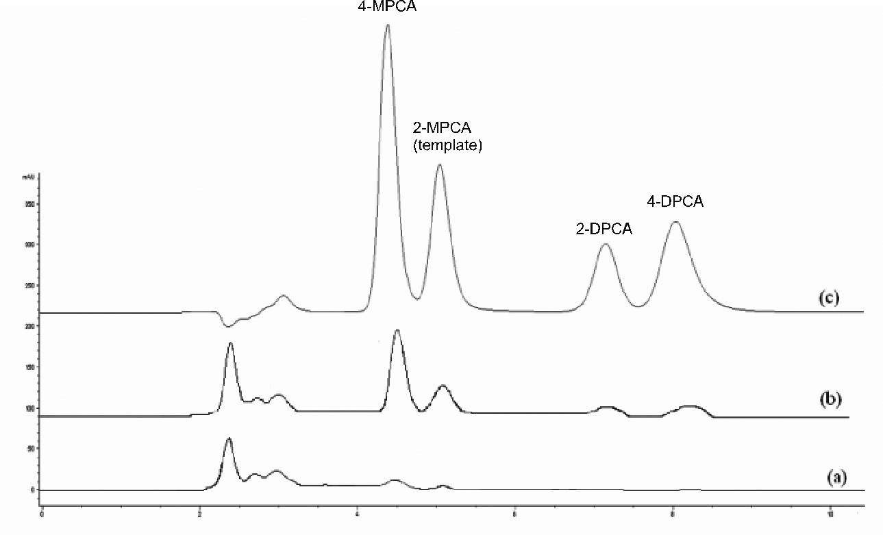 Chromatografické záznamy vzorky ľudskej plazmy bez pridania študovaných látok po SPE na NIP2 (a), vzorky ľudskej plazmy po pridaní študovaných látok (1 μg/ml) po SPE na MIP2 (b), zmes štandardov (metanolický roztok, 10 μg/ml každého analytu) (c) Kolóna: Separon SGX C18. Mobilná fáza: metanol/acetonitril/ kyselina octová/dietylamín (80/20/0.1/0.1, v/v/v/v), izokratická elúcia. Prietok 0,5 ml/min. Detekcia DAD, 240 nm. Dávkovaný objem 50 μl.