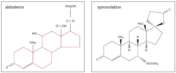 Aldosteron a jeho nespecifický kompetitivní inhibitor spironolakton.
