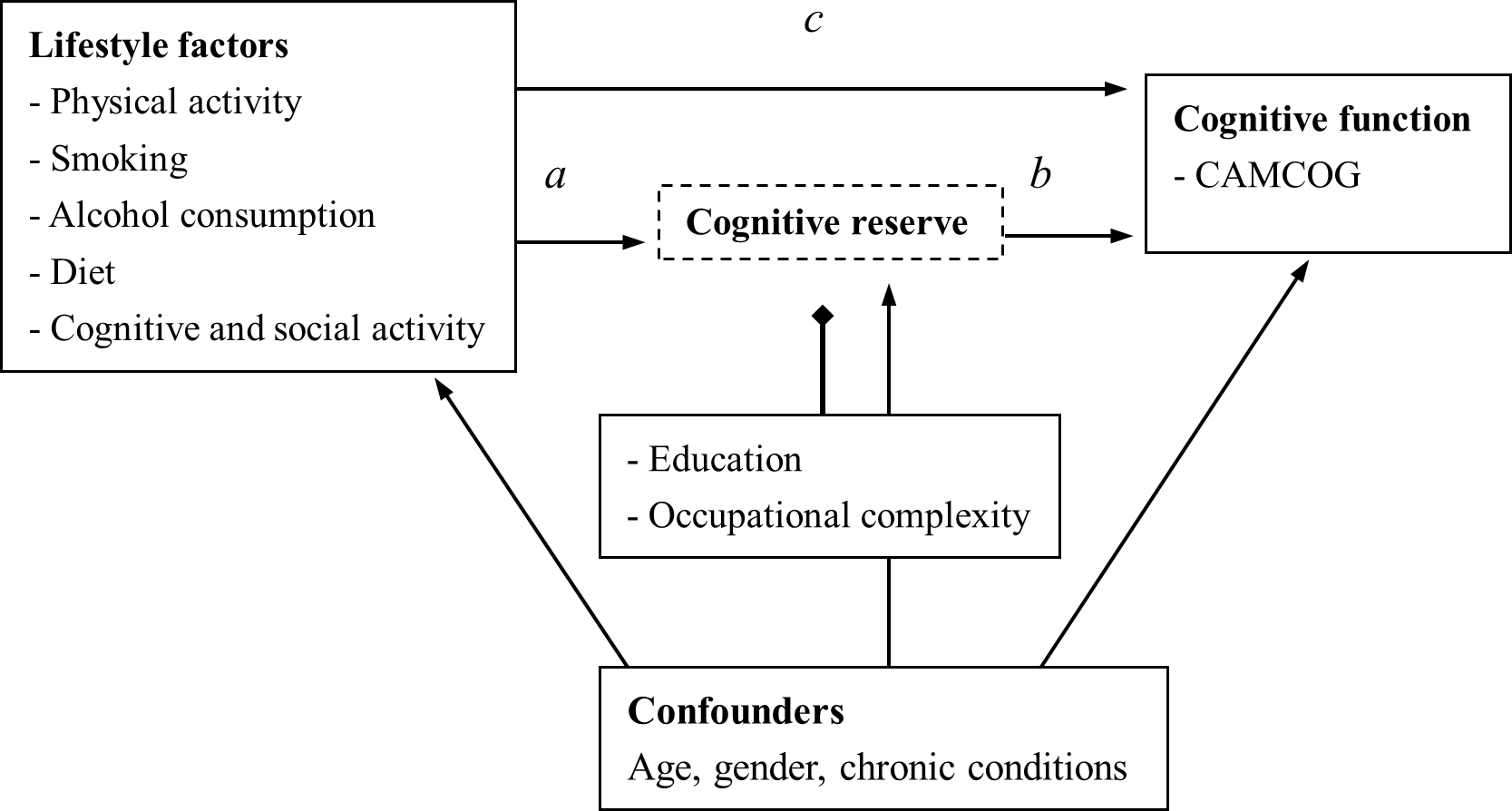 Mediating effect of cognitive reserve on the association between lifestyle factors and cognitive function.