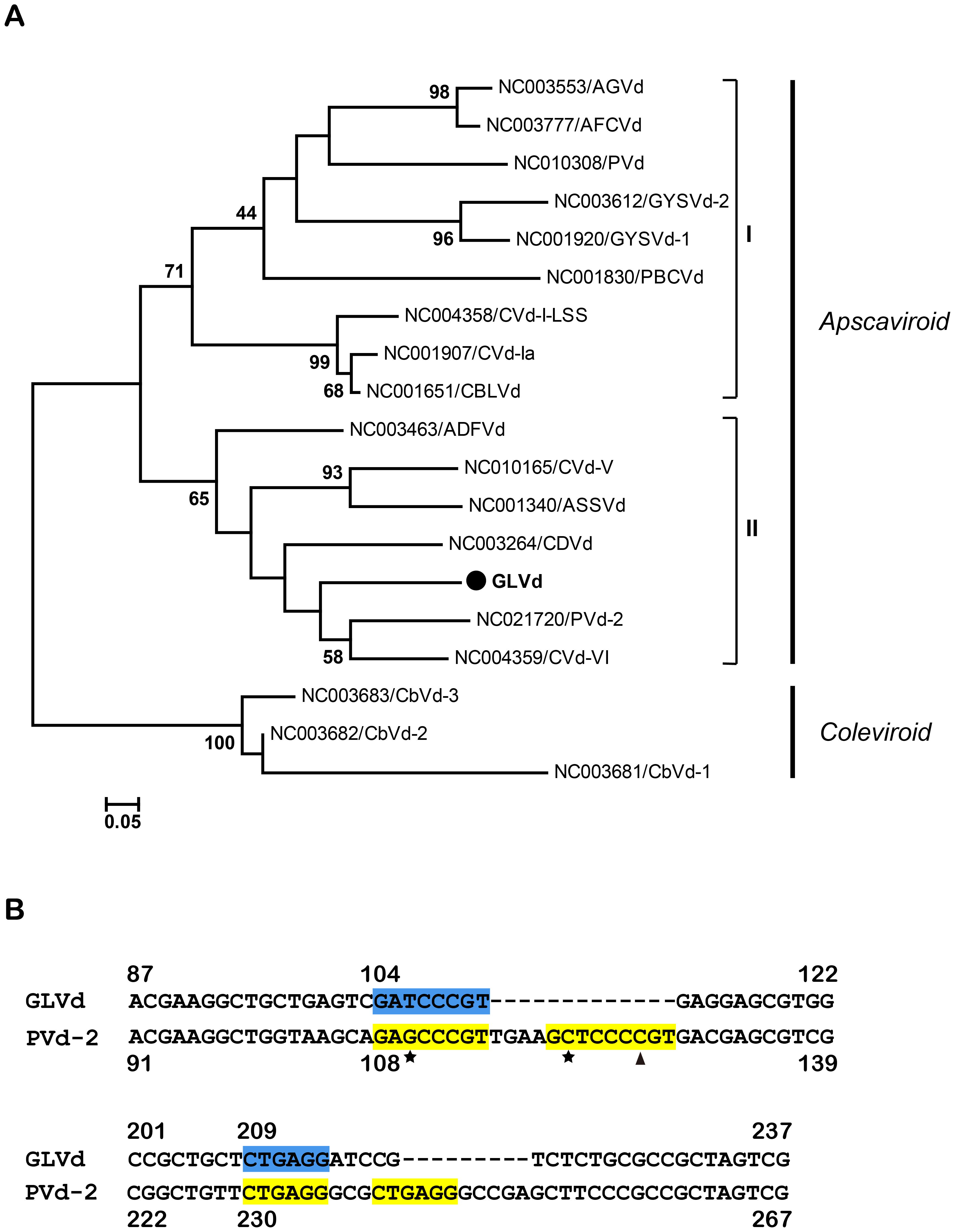 Phylogenetic analysis and alignment of GLVd.