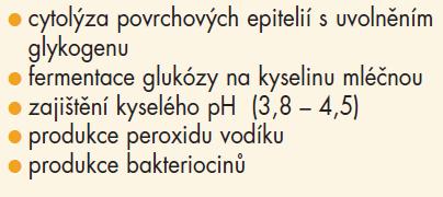 Aktivity acidofilního laktobacilu v pochvě.