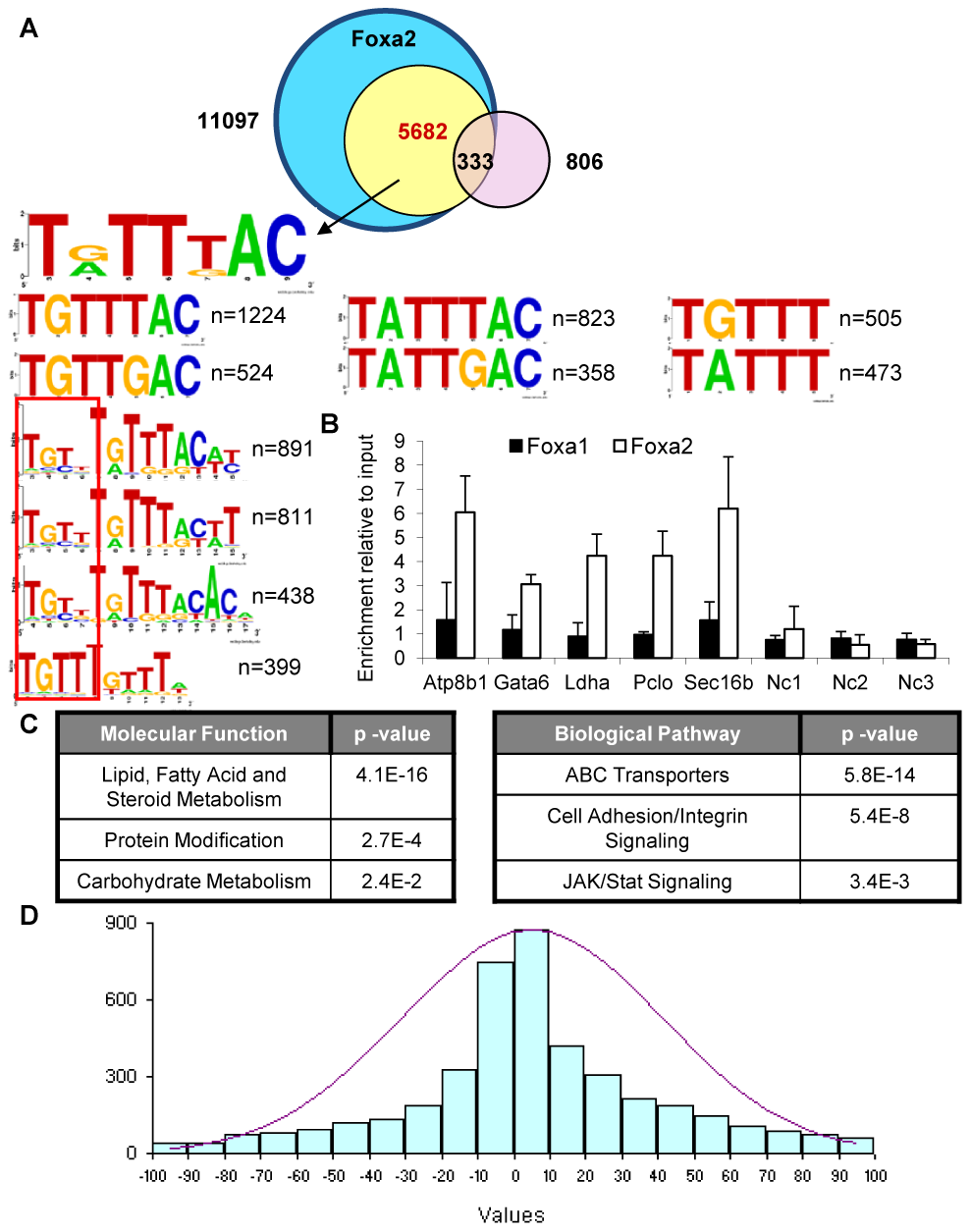 Foxa2-Specific Targets Contain a Medium-Strength <i>Forkhead</i> Consensus and Control Genes in Steroid and Lipid Metabolism.