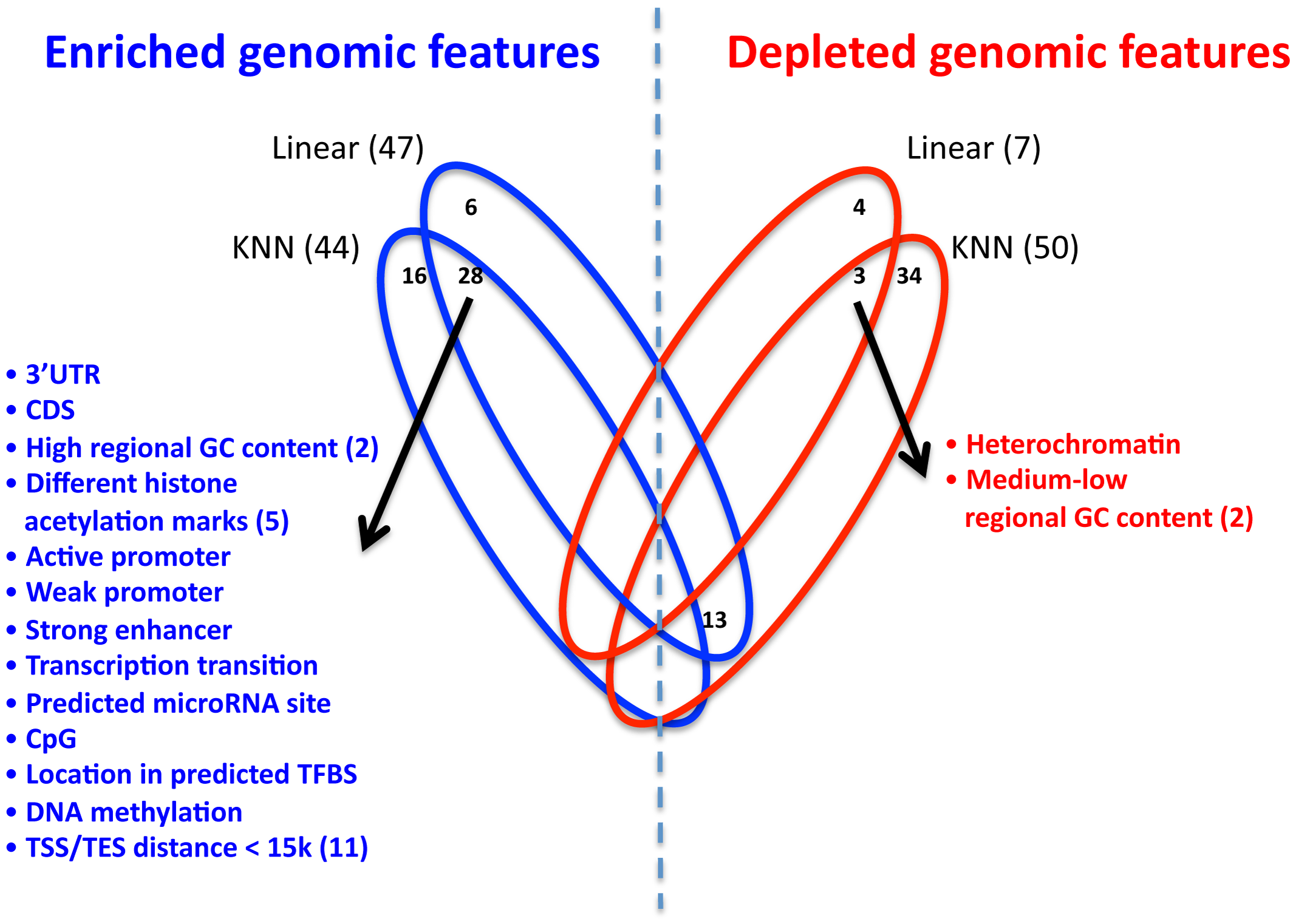 Enrichment and depletion of different genomic features in the multi–SNP models.