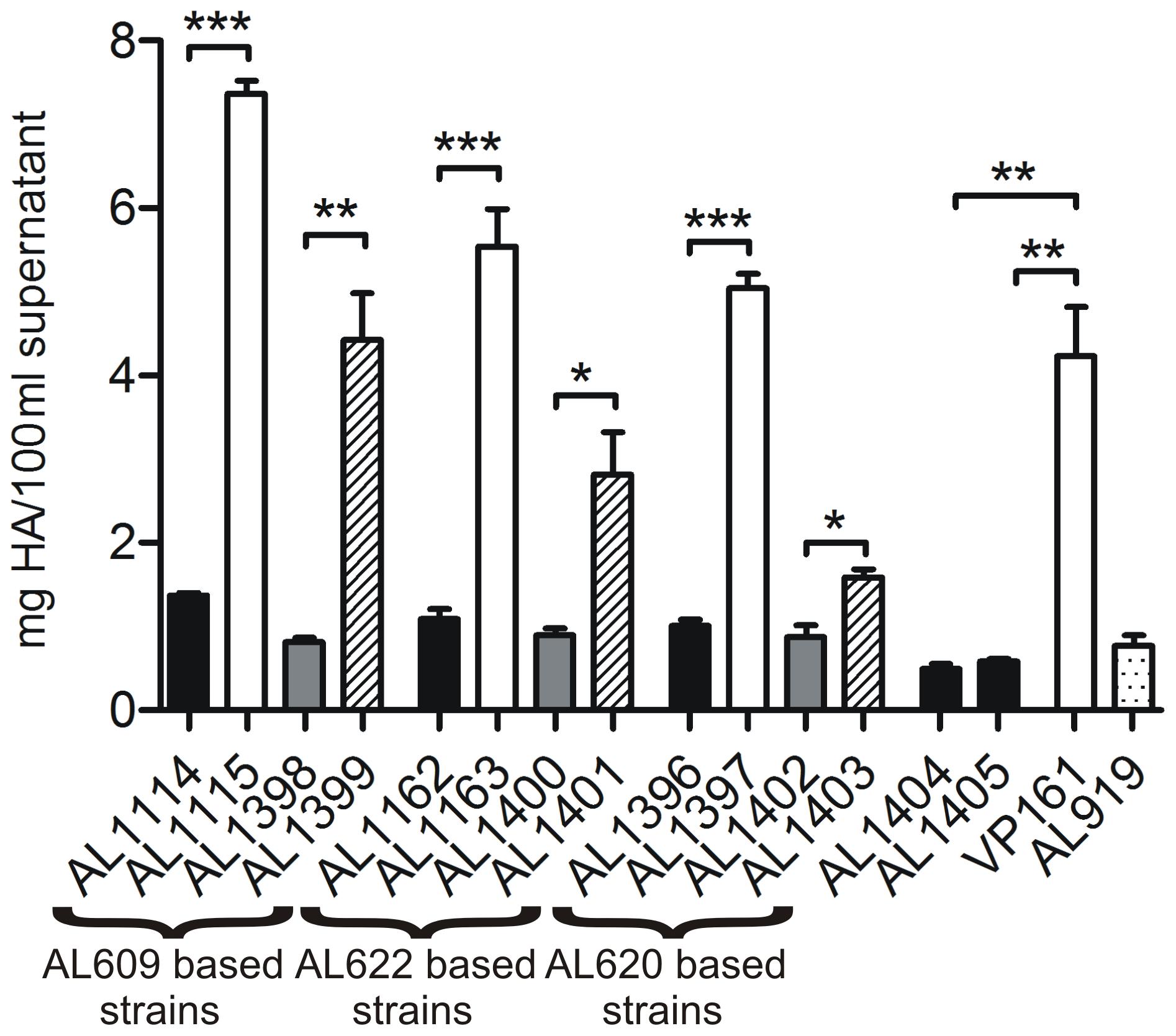 Hyaluronic acid (HA) capsular polysaccharide produced by <i>P. multocida</i> strains.