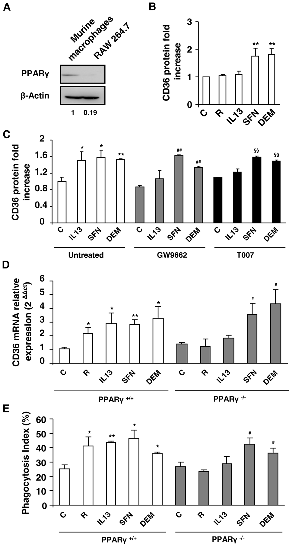 Nrf2 activators promote CD36 expression independently of PPARγ.