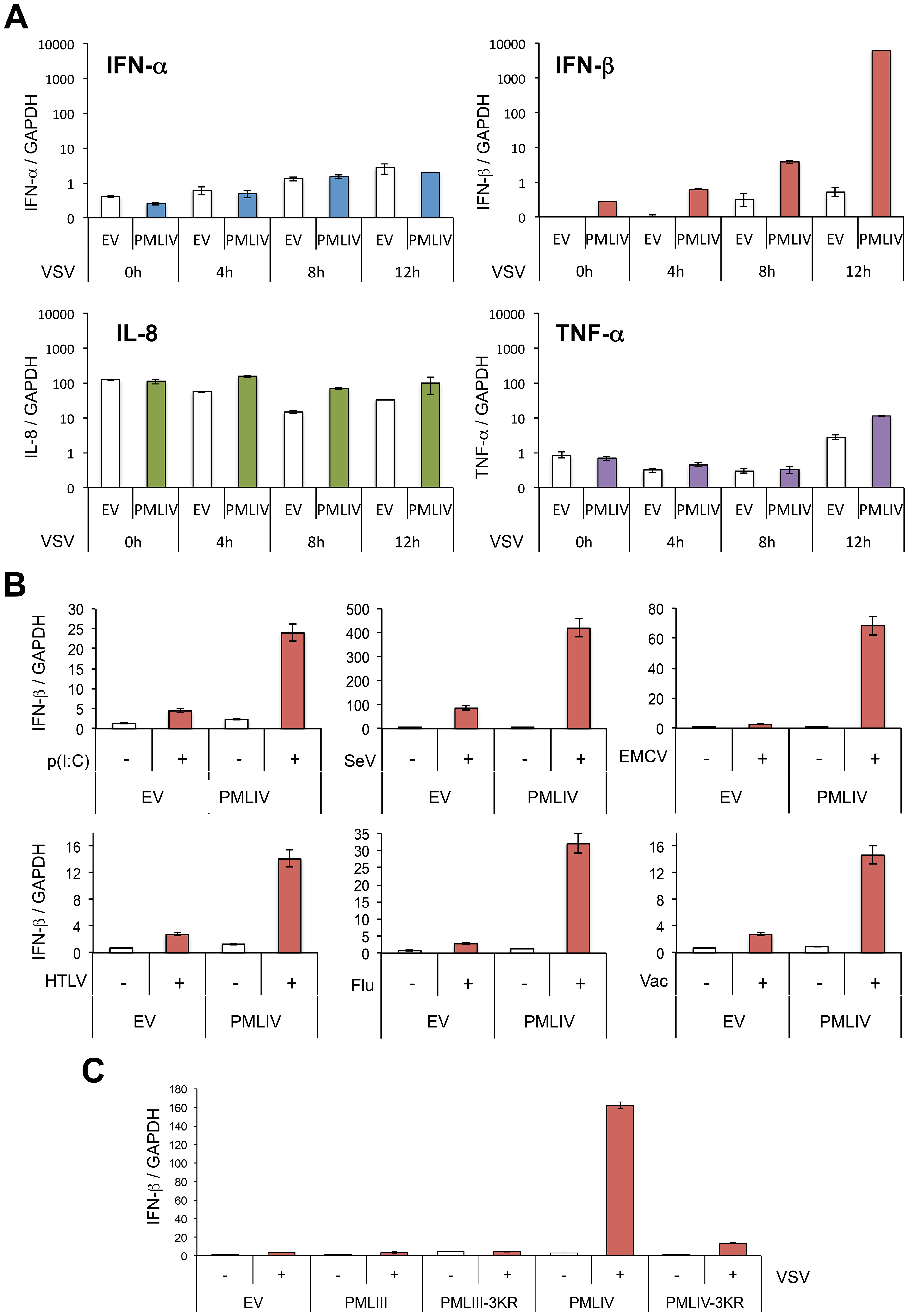 PMLIV positively regulates IFN-β synthesis.