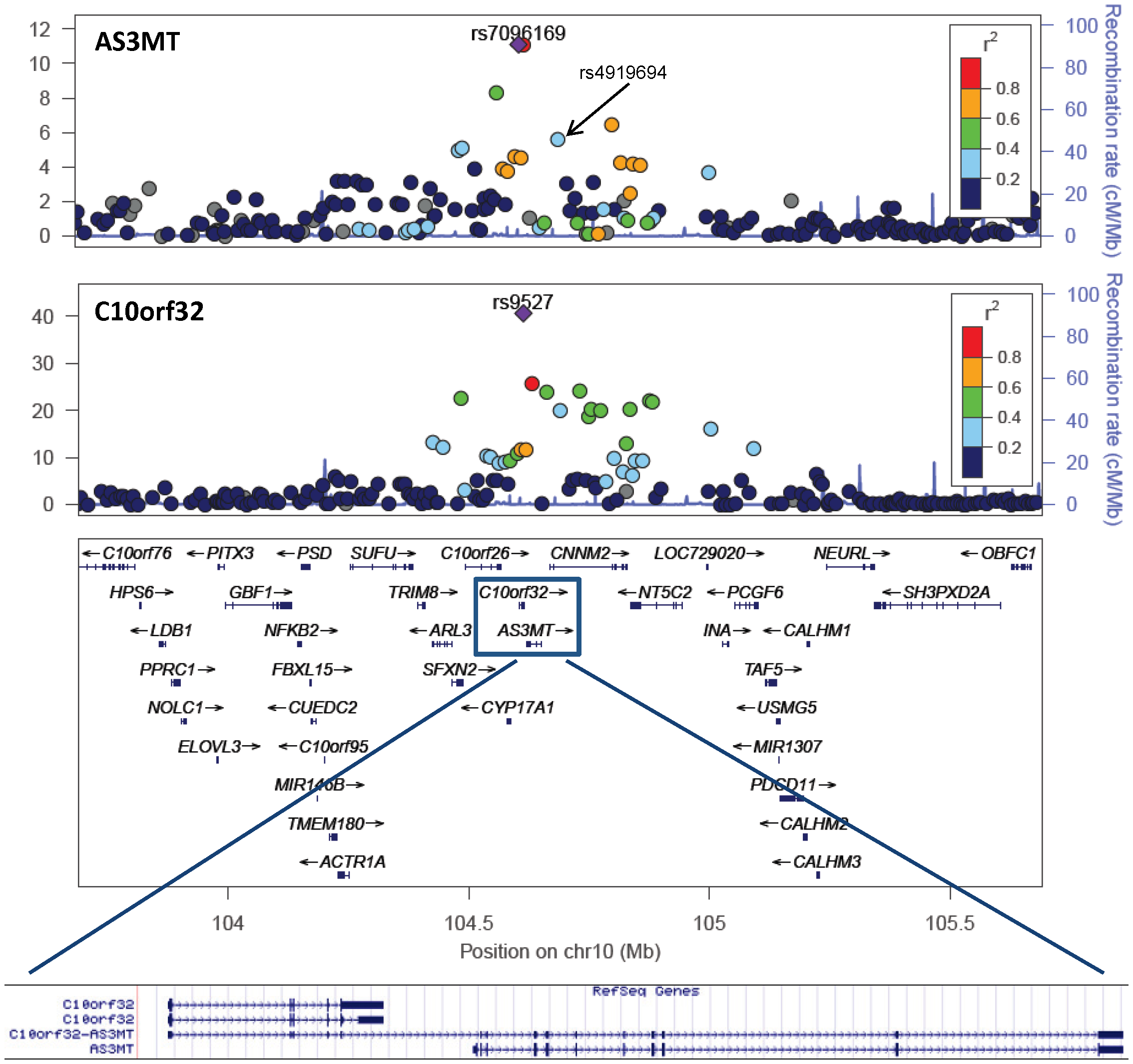 Variants in the 10q24.32 region are associated with transcript levels of AS3MT and C10orf32.