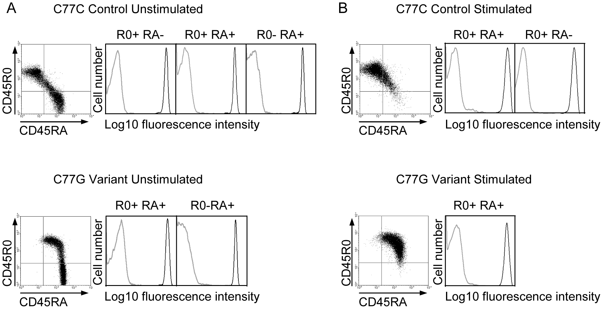 pUL11 interacts with T cells expressing both long and short isoforms of CD45.