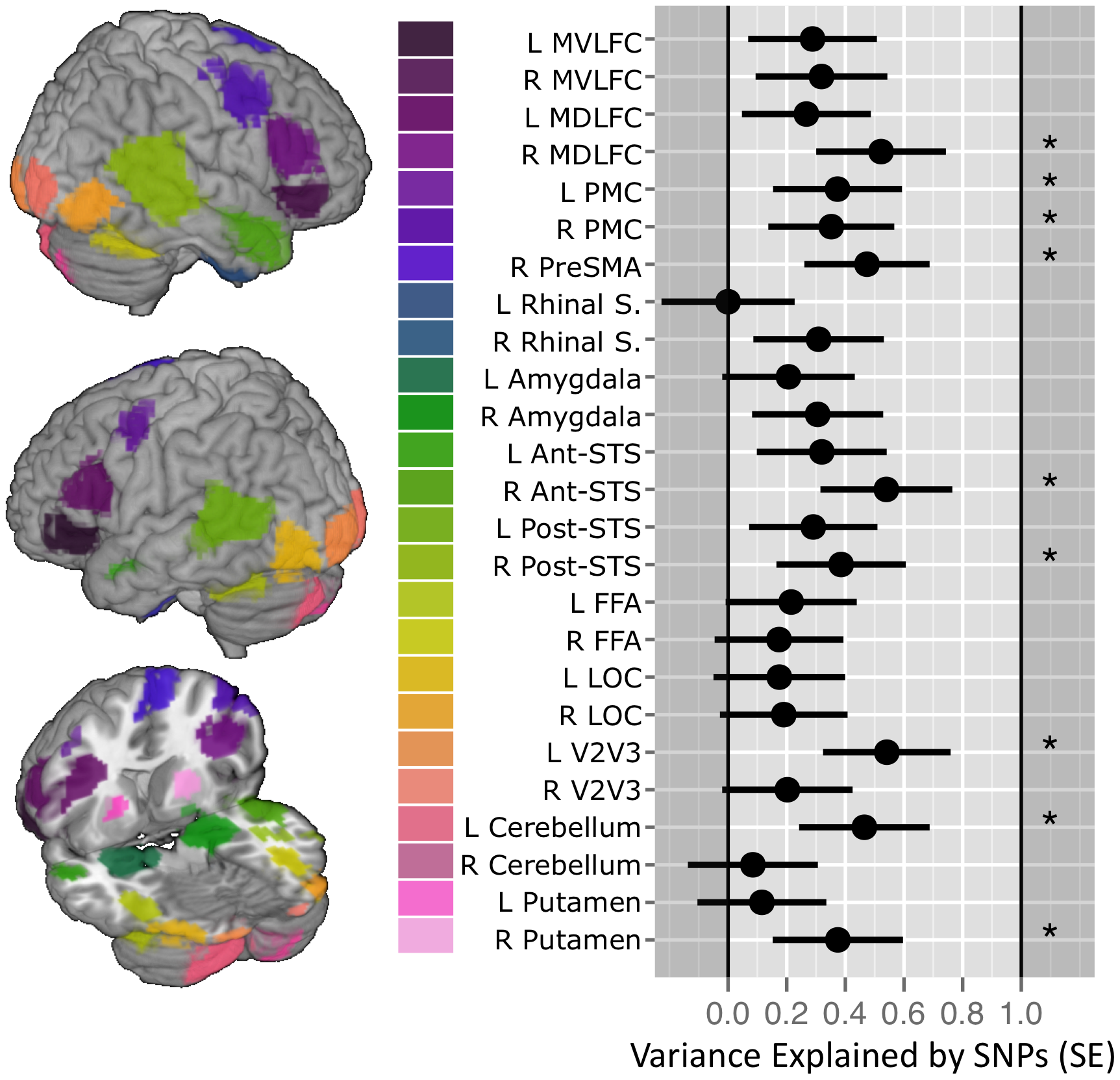 SNP-based estimates of heritability in the brain response to ambiguous faces.