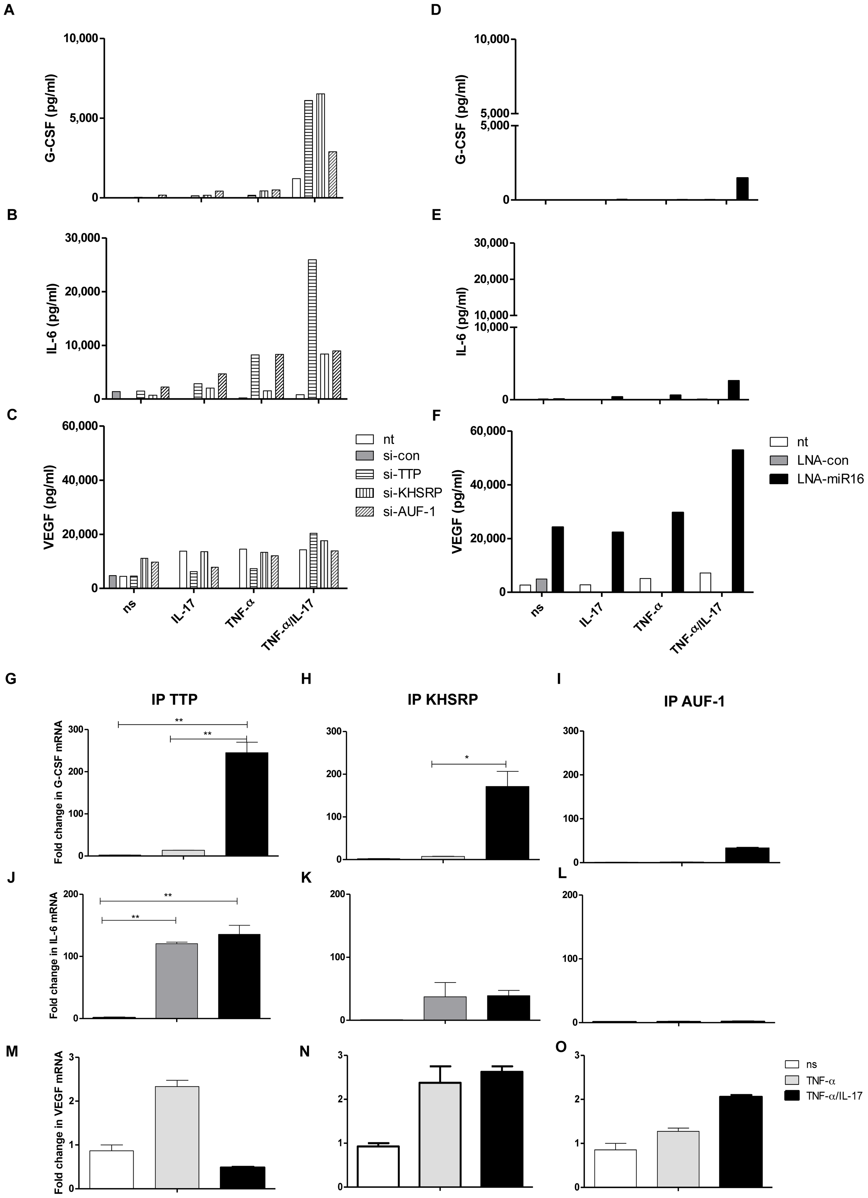 Involvement of AUBps and miR16 on expression of other inflammatory mediators and the effect of IL-17.