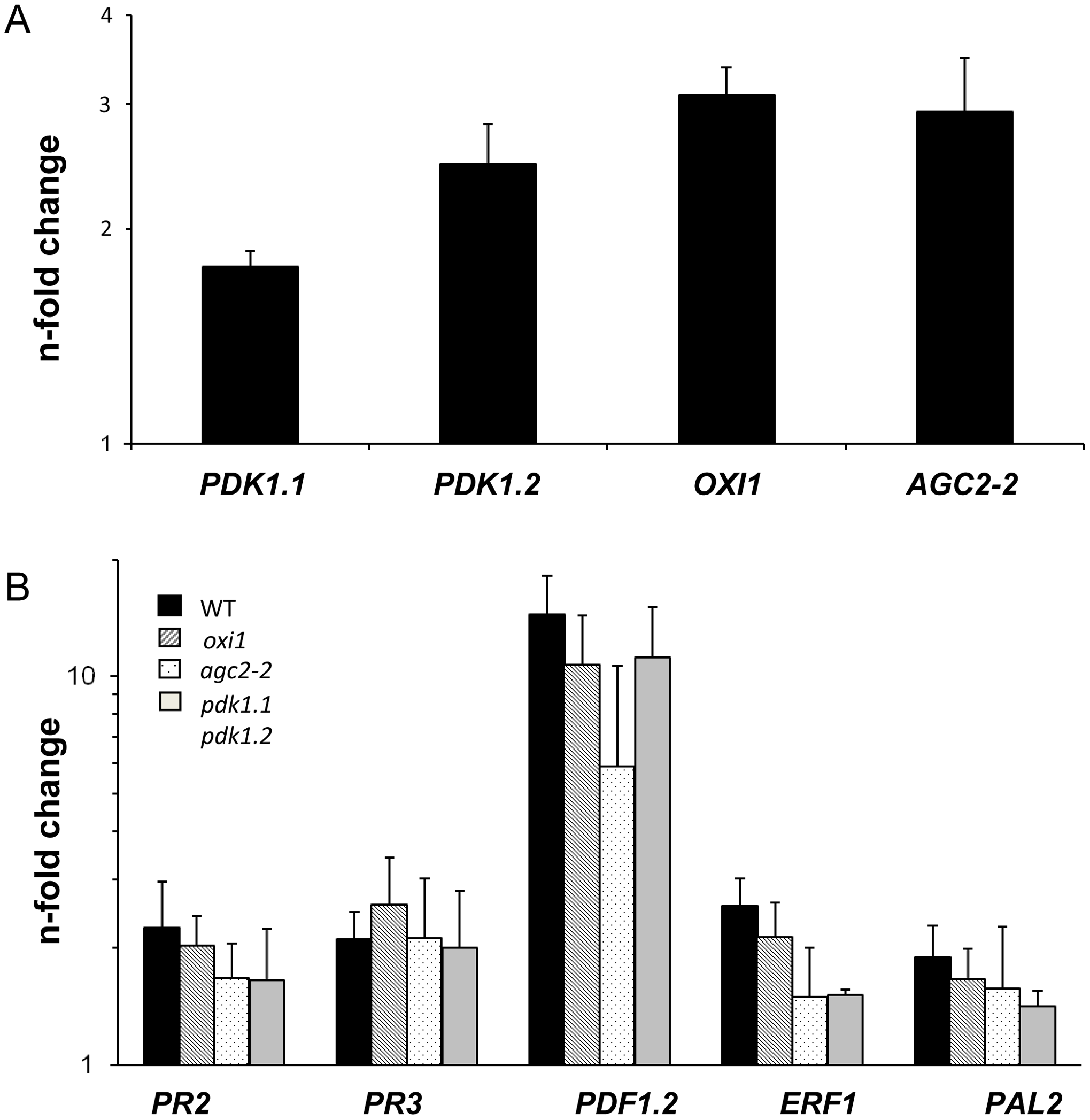 Expression levels of <i>PDK1</i>, <i>OXI1</i> and <i>AGC2-2</i> genes and defense genes after treatment with a high dosis of <i>P. indica</i> (for details, cf. <em class=&quot;ref&quot;>Methods and Materials</em> and Figure S4A,B in <em class=&quot;ref&quot;>Text S1</em>).