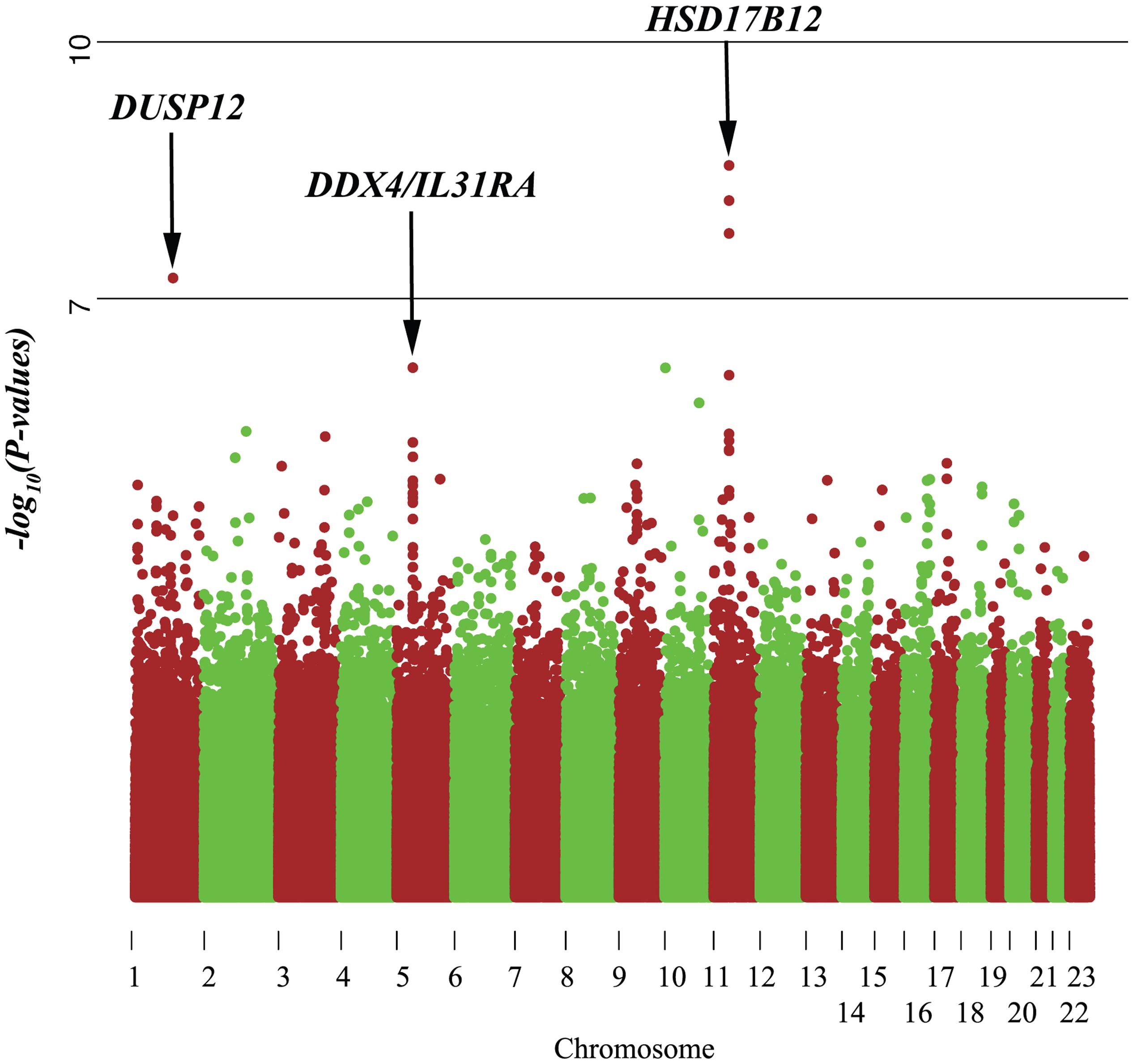 Manhattan plot of single marker analysis of the low-risk neuroblastoma data set.