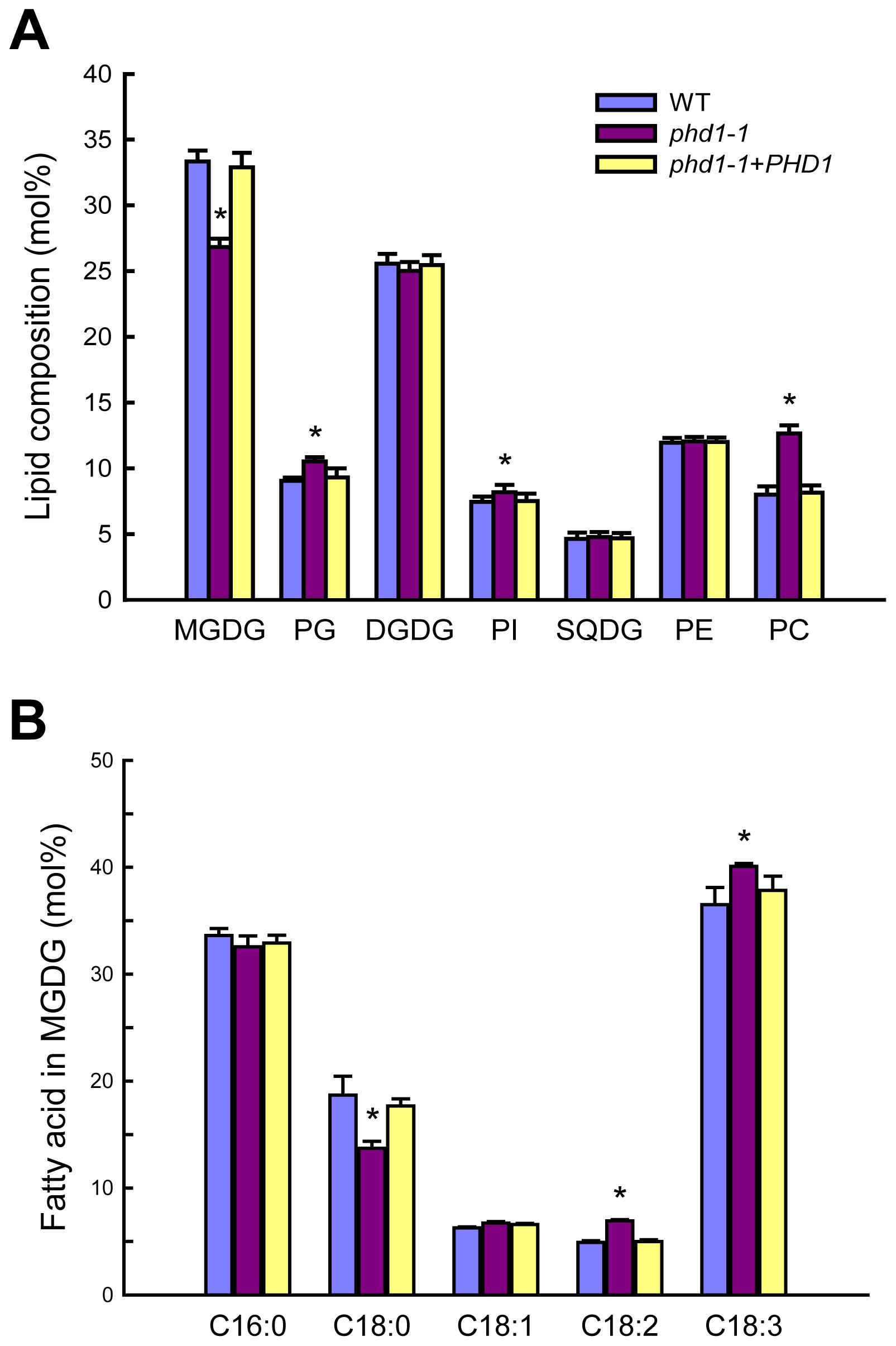 Polar lipid composition and fatty acid profiles in leaves of wild type, <i>phd1</i>-<i>1</i>, and <i>PHD1</i>-complemented plants.