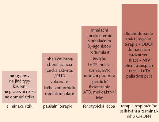 Čtyřstupňové schéma terapie CHOPN – rozšířená verze. ATB – antibiotika, BVR – bronchoskopická volum-redukce, DDOT – dlouhodobá domácí oxygenoterapie, LuTx – plicní transplantace, LVRS – chirurgická volum-redukce, NIV – neinvazivní ventilační podpora, RHB – plicní rehabilitace