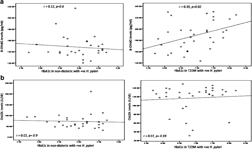 Correlation between HbA1c in non-diabetic and diabetic patients with positive H. pylori (expressed in %) and a DNA damage 8-OHdG (expressed in pg/ml). b Oxidized LDL (expressed in U/dL). The levels of 8-OHdG or Ox-LDL (<i>y axis</i>) were correlated with those of HbA1c (<i>x axis</i>). An association was observed between HbA1c in diabetic patients with positive <i>H. pylori</i> and 8-OHdG (r = 0.39, p = 0.02). No association was observed between HbA1c in non-diabetic and diabetic patients with positive <i>H. pylori</i> and Ox-LDL. Based on the simple linear regression of cases with positive <i>H. pylori</i> in non-diabetic and diabetic patients