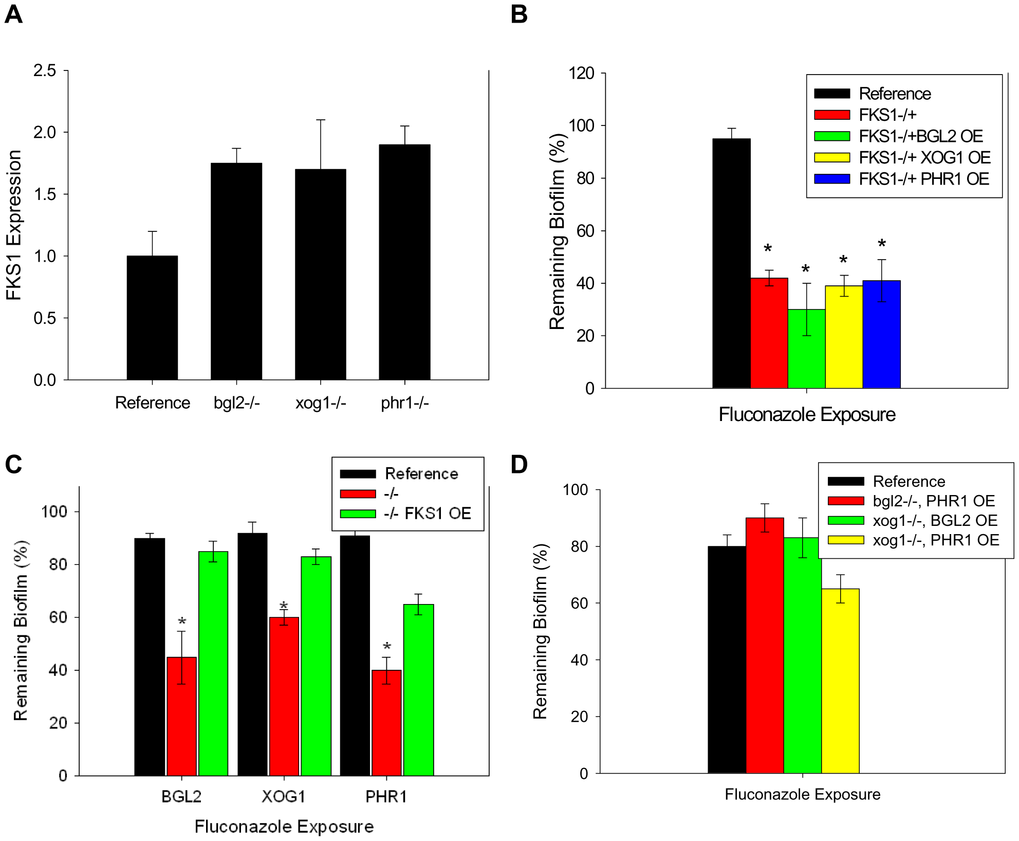 Relationship between β-1,3 glucan synthase and modification enzymes during biofilm growth.