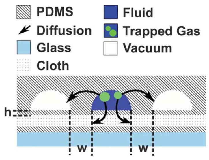 Fig. 1: Schematic cross-section of the structure and working principle of the degasser design (not to scale). 'h' denotes the thicknesses of the PDMS membrane between fluid and bottom vacuum channel, whereas 'w' denotes the thickness between fluid and neighbored vacuum channels.