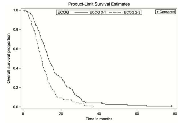 Figure 1. Overall survival by ECOG performance status. Kaplan–Meier curve of LAPC patients with ECOG PS 0–1 (n = 146) versus ECOG PS 2–3 (n = 98). P = 0.0002, HR 1.69 (95% CI 1.28–2.23).
