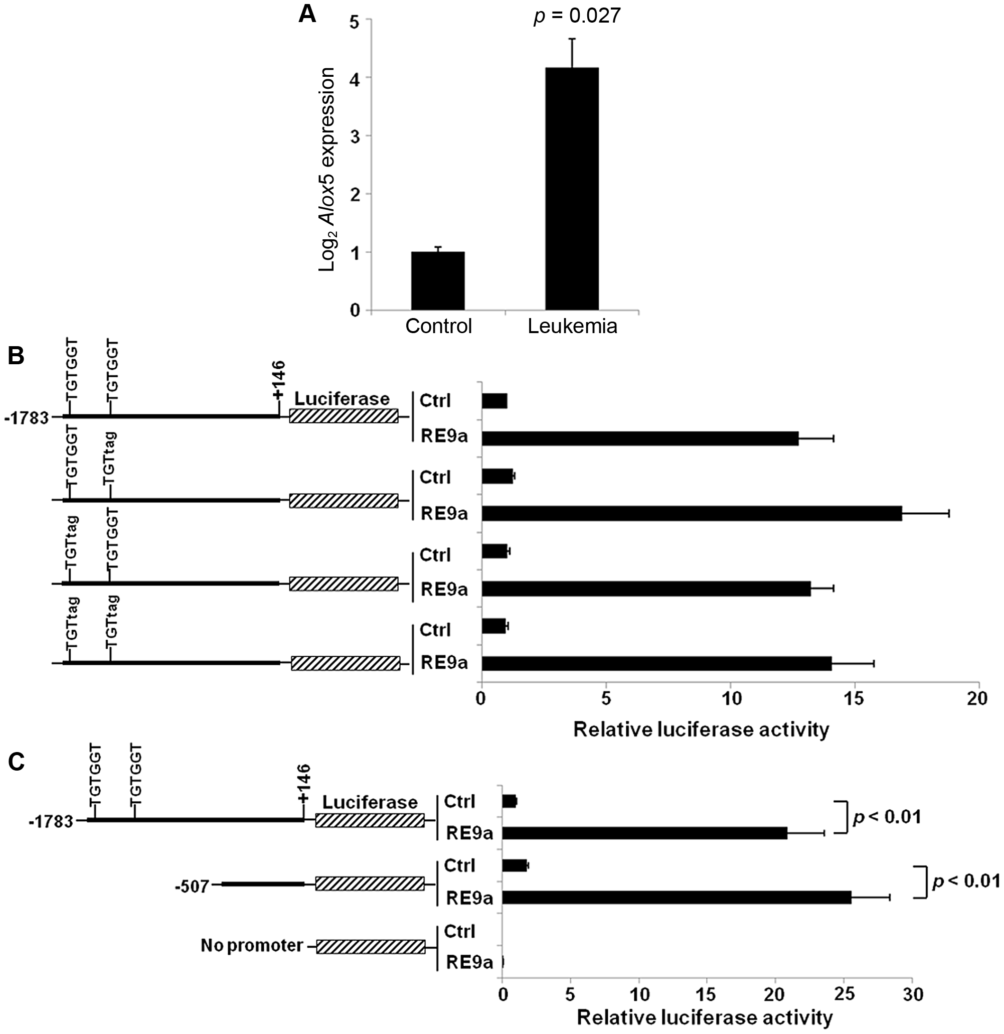 Upregulation of <i>Alox5</i> in acute myeloid leukemia and by RUNX1-ETO9a.