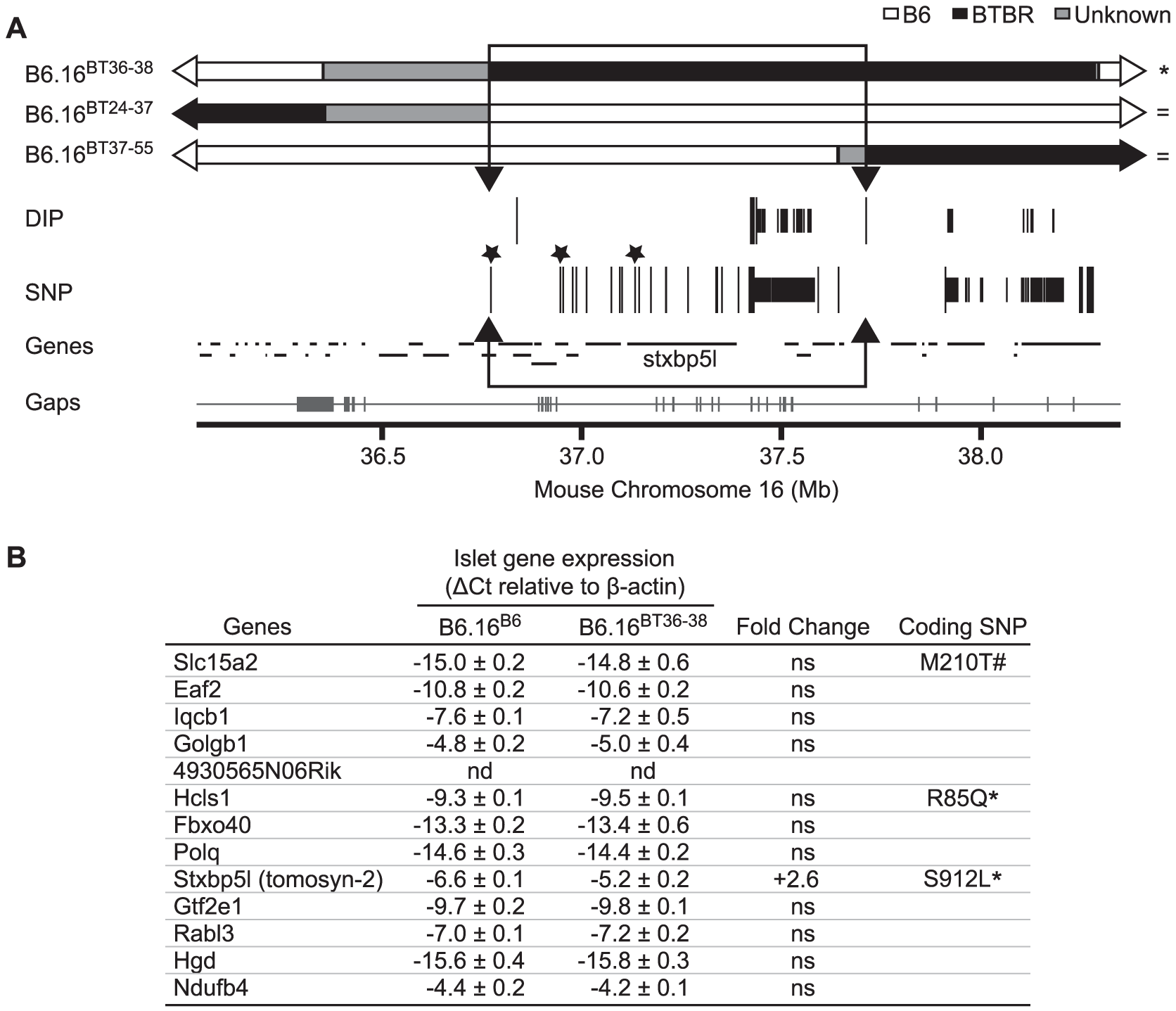 Insulin secretion defective region narrowed to 0.94 Mb on mouse chromosome 16 containing 13 genes.