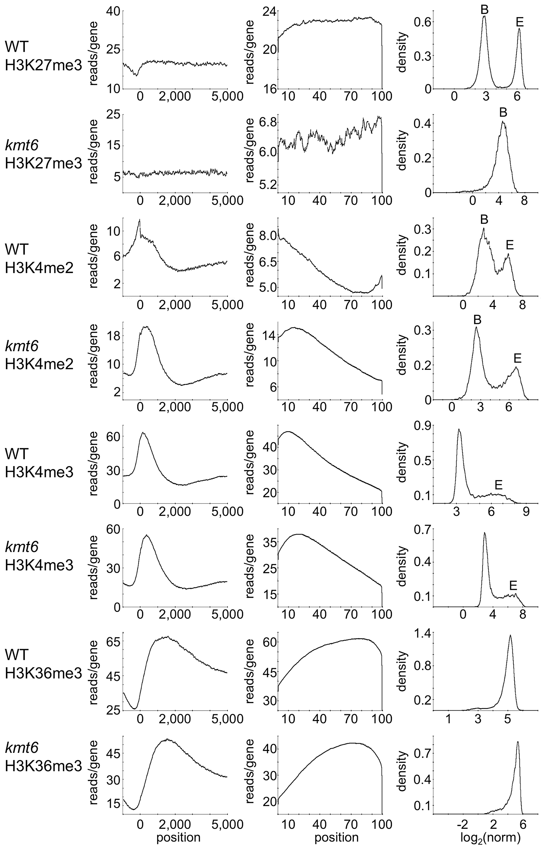Distribution of histone modifications across the complete set of <i>F. graminearum</i> genes.
