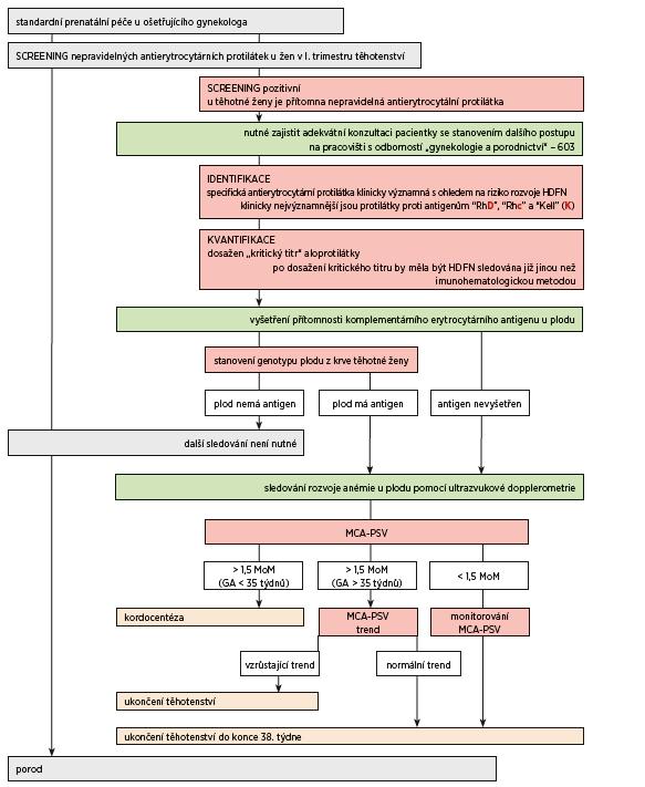 Schéma. Algoritmus pro management těhotenství s rizikem rozvoje závažné formy Hemolytické nemoci plodu a novorozence
