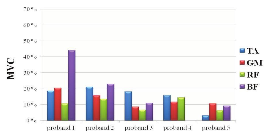 Normované hodnoty EMG aktivity vybraných svalů při chůzi ve vodě.
