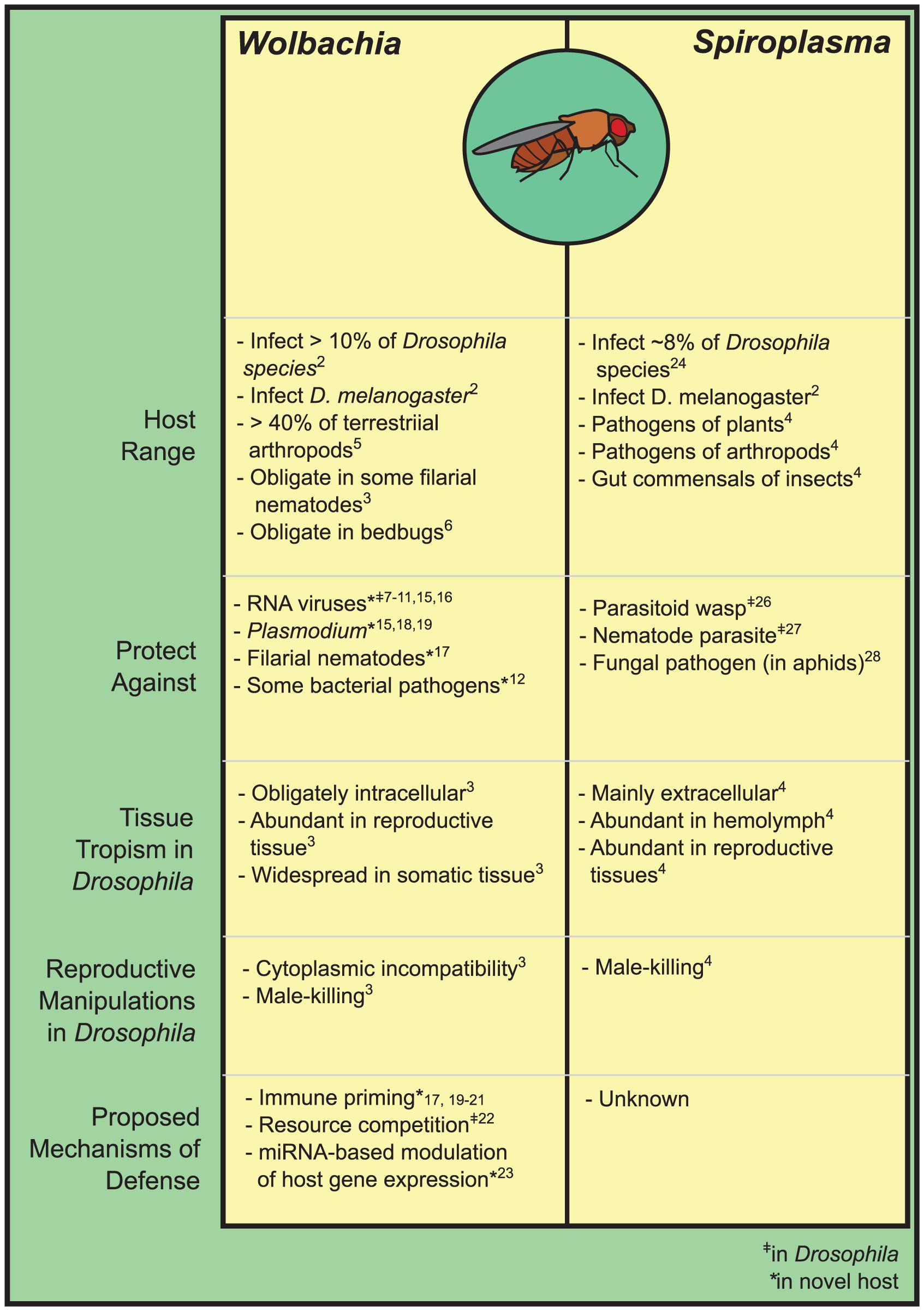 The inherited symbionts of <i>Drosophila</i>.