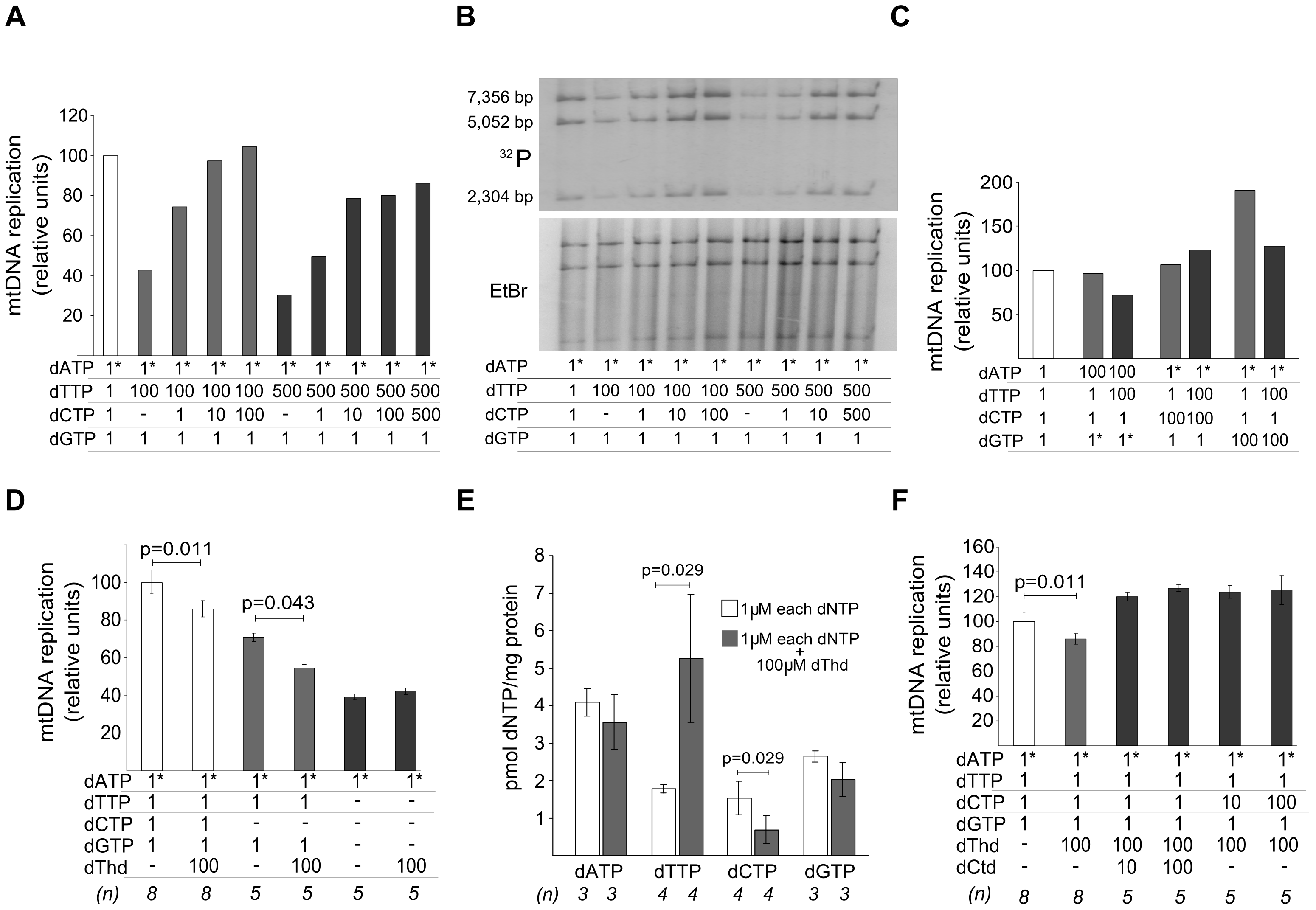 dTTP- and thymidine-induced decrease in mtDNA replication is prevented by dCTP supplementation.