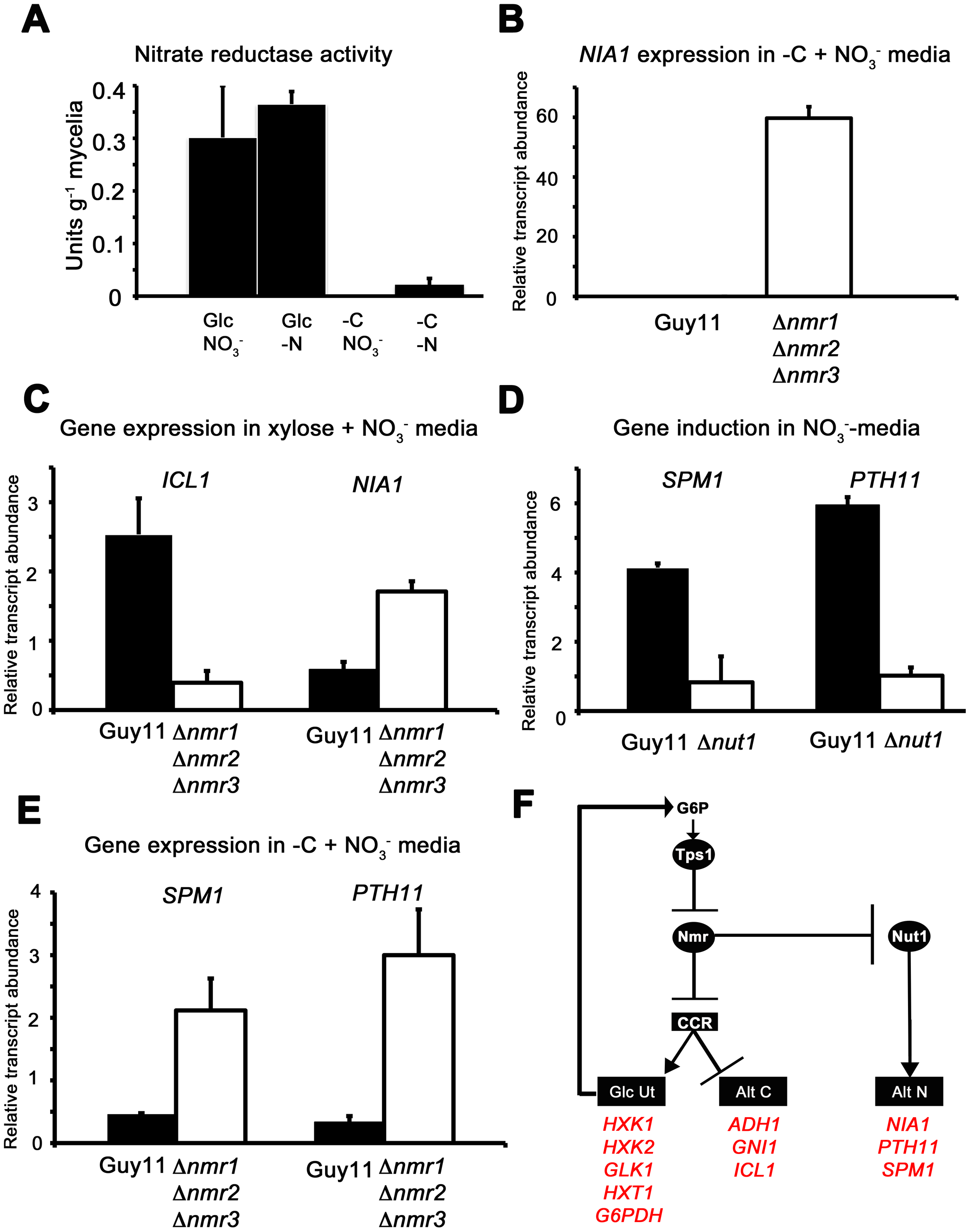 The Nmr1-3 inhibitor proteins regulate nitrogen and carbon metabolism in response to G6P.