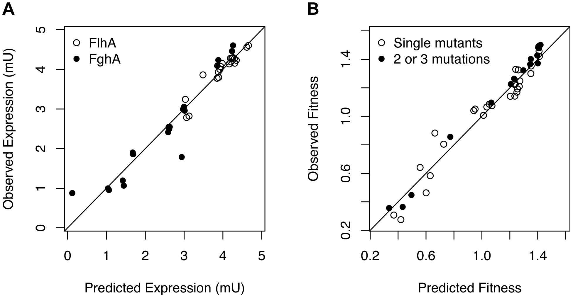 Mutations exert independent effects upon enzyme expression but a mechanistic model of benefits and costs of enzymes is required to predict combined effects on fitness.