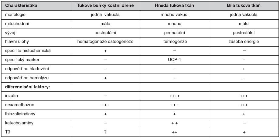 Fyziologické rozdíly mezi jednotlivými typy tukové tkáně (6)