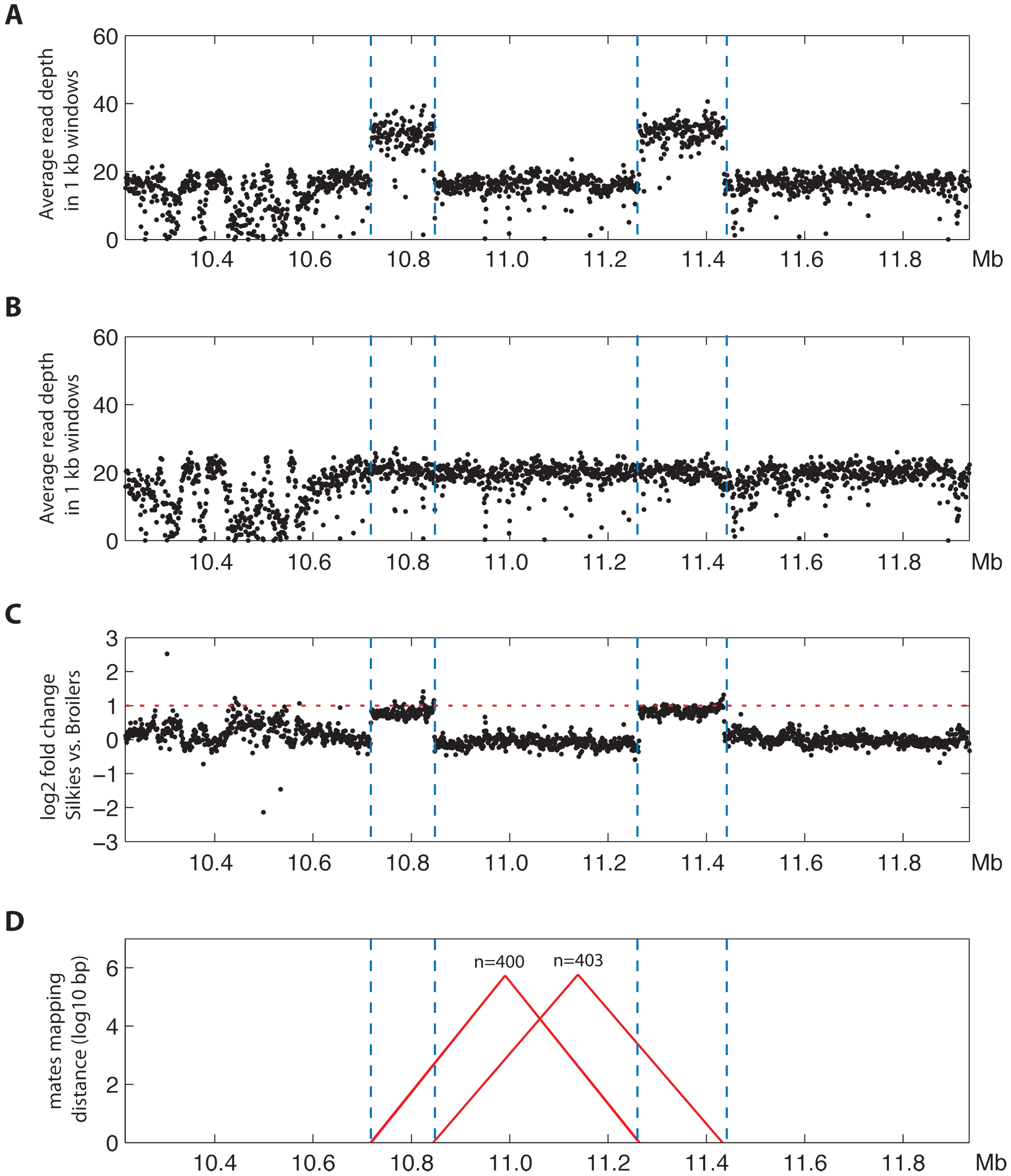 Massively parallel sequencing confirms the inverted duplication corresponding to the FM locus.