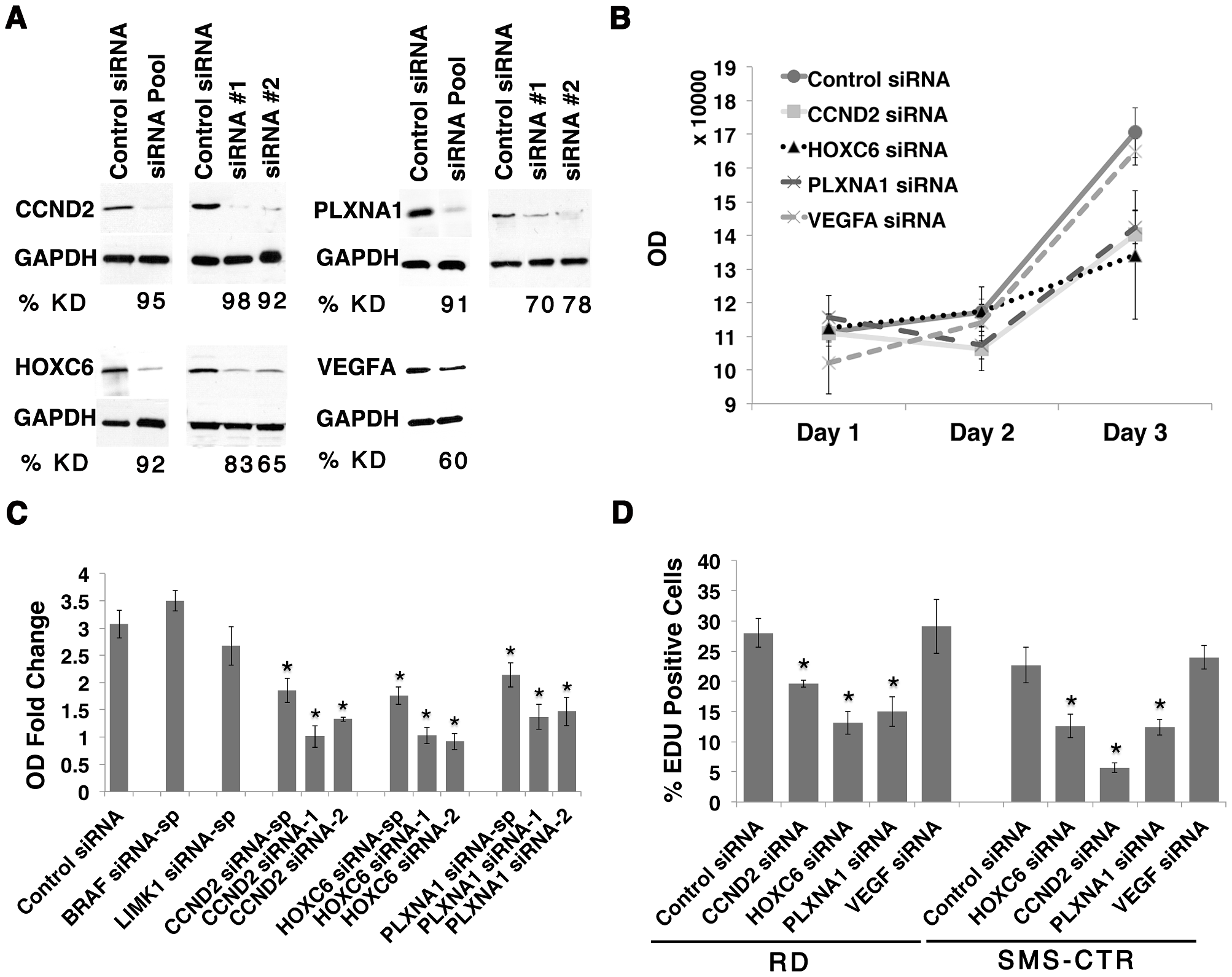 CCND2, HOXC6 and PLXNA1 exert important roles in human ERMS cell proliferation.