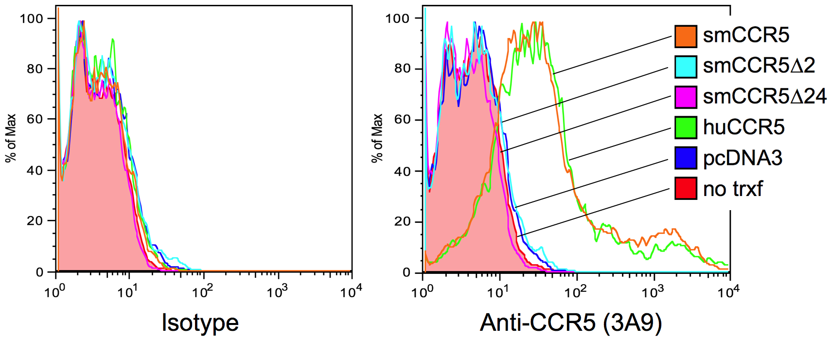 Surface expression of wild-type and mutant CCR5 variants <i>in vitro</i>.