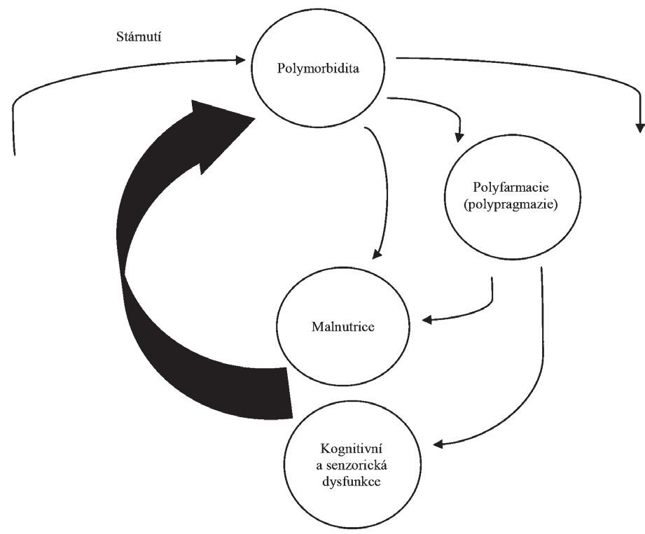 Začarovaný kruh: vztah mezi stárnutím, malnutricií a polyfarmacií