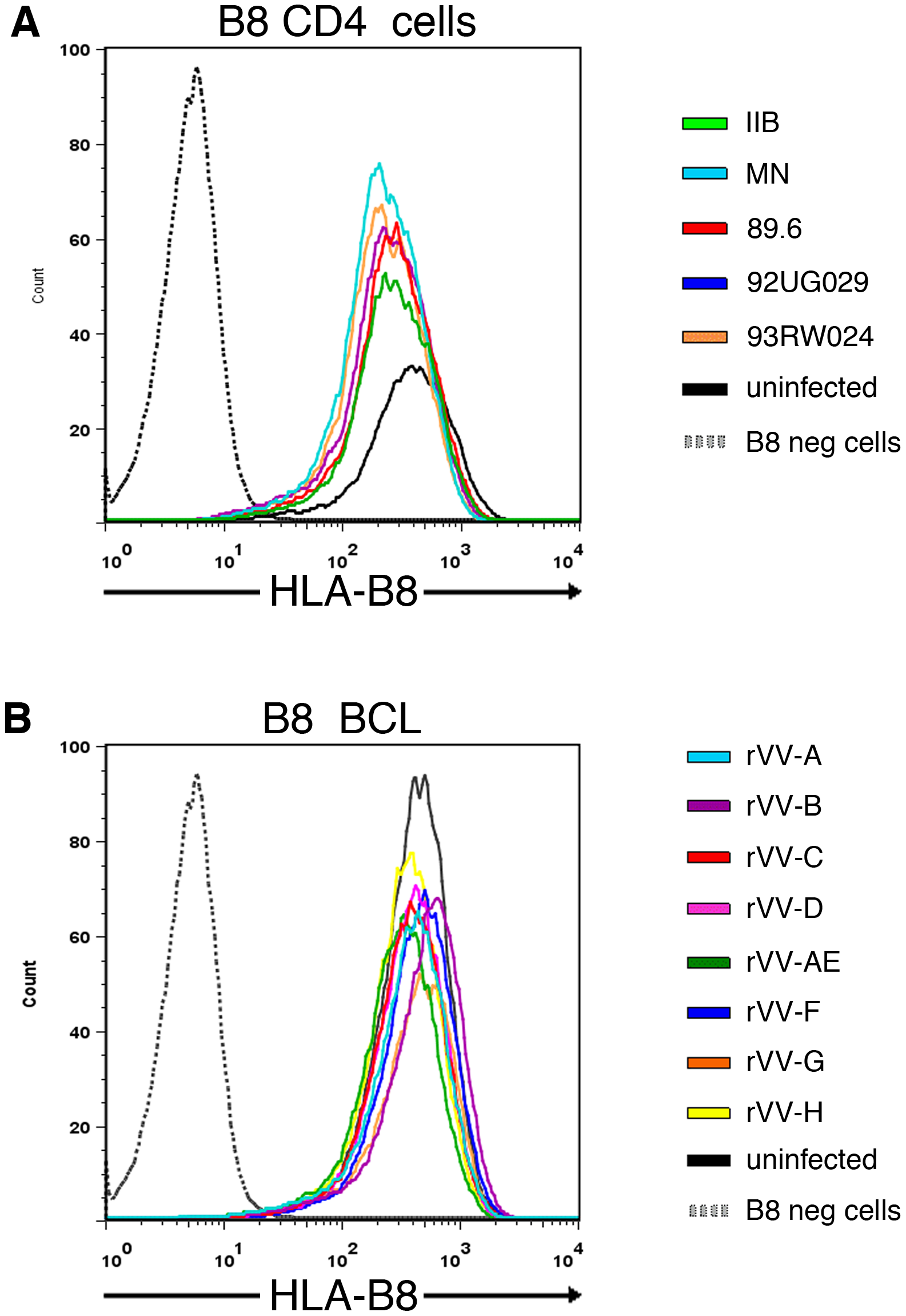 No marked difference in HLA-B8 surface expression between target cells infected by individual HIV isolates or rVV-Nef constructs.