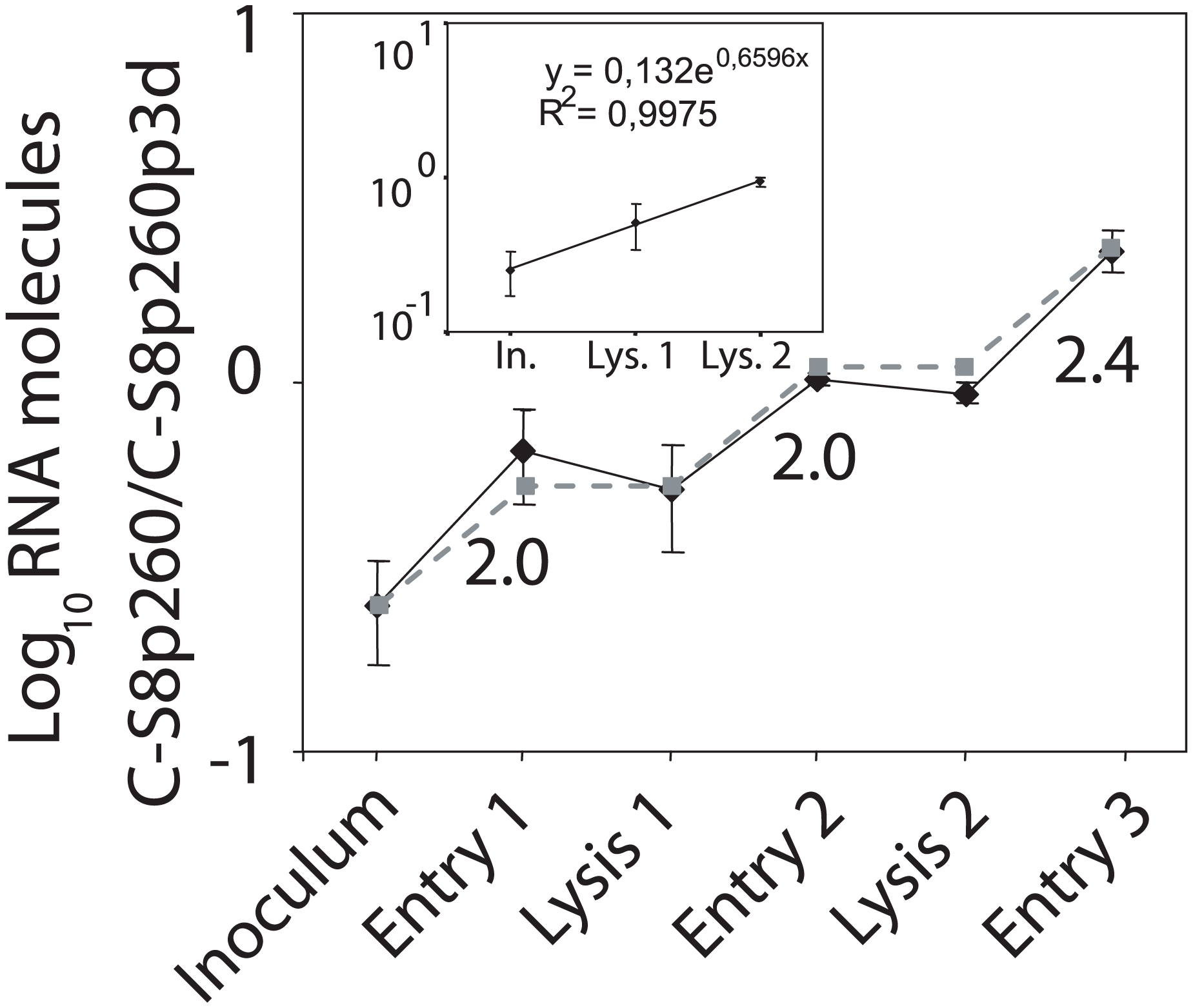 Dissection of the competition between C-S8p260 and C-S8p260p3d throughout sequential infectious cycles.