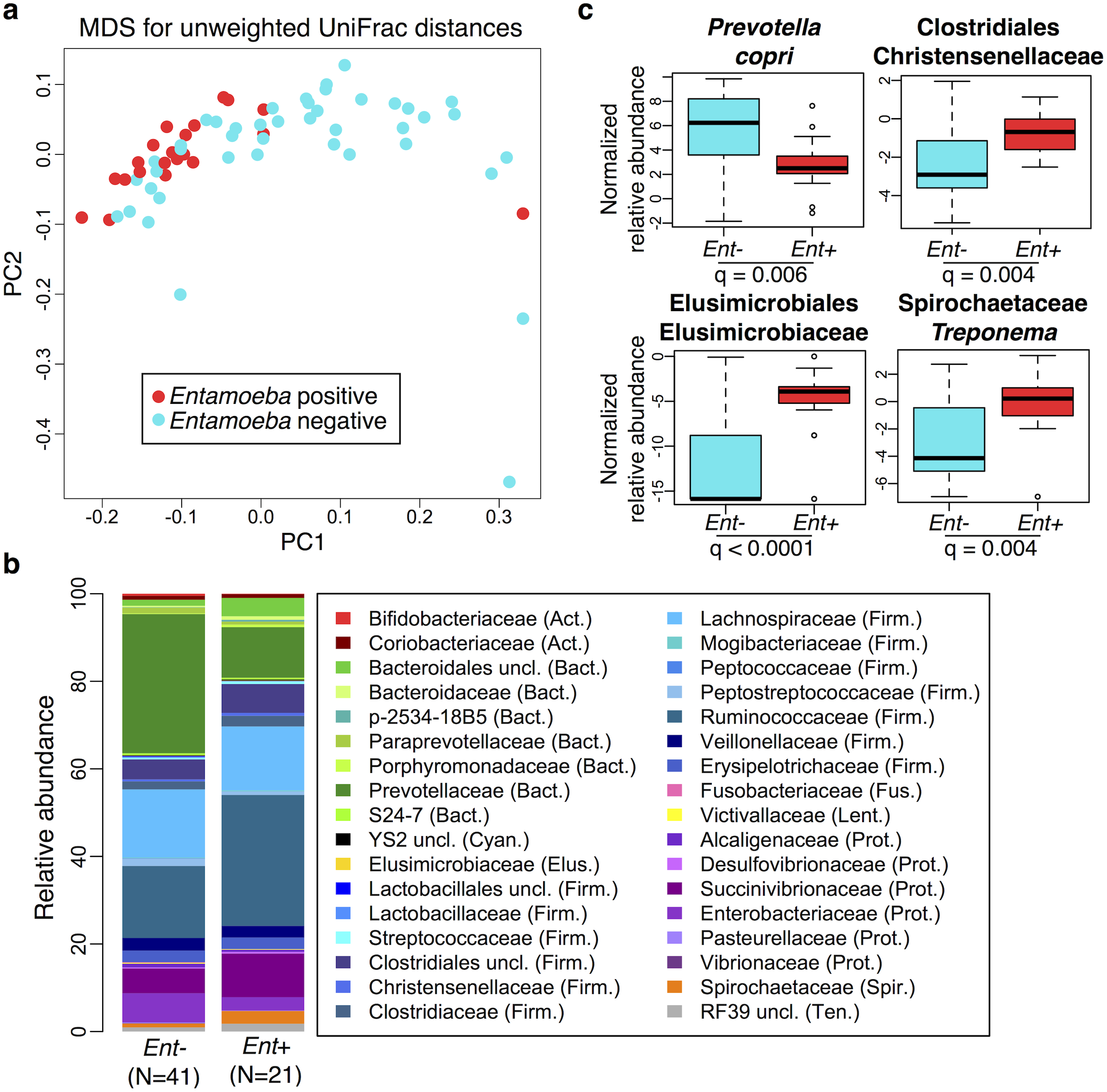 Relationship between the presence of <i>Entamoeba</i> (<i>Ent</i>- or <i>Ent</i>+) and fecal microbiome composition.